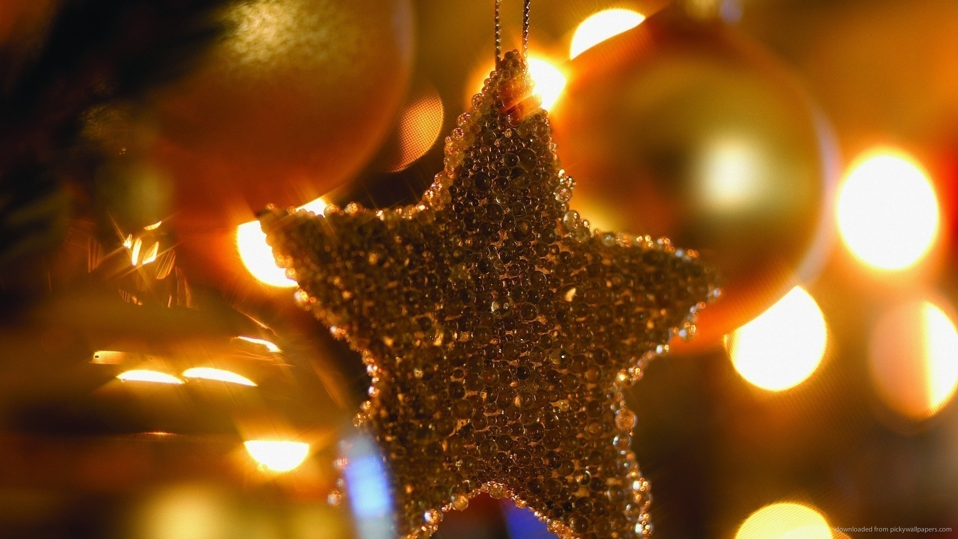 Christmas Star picture