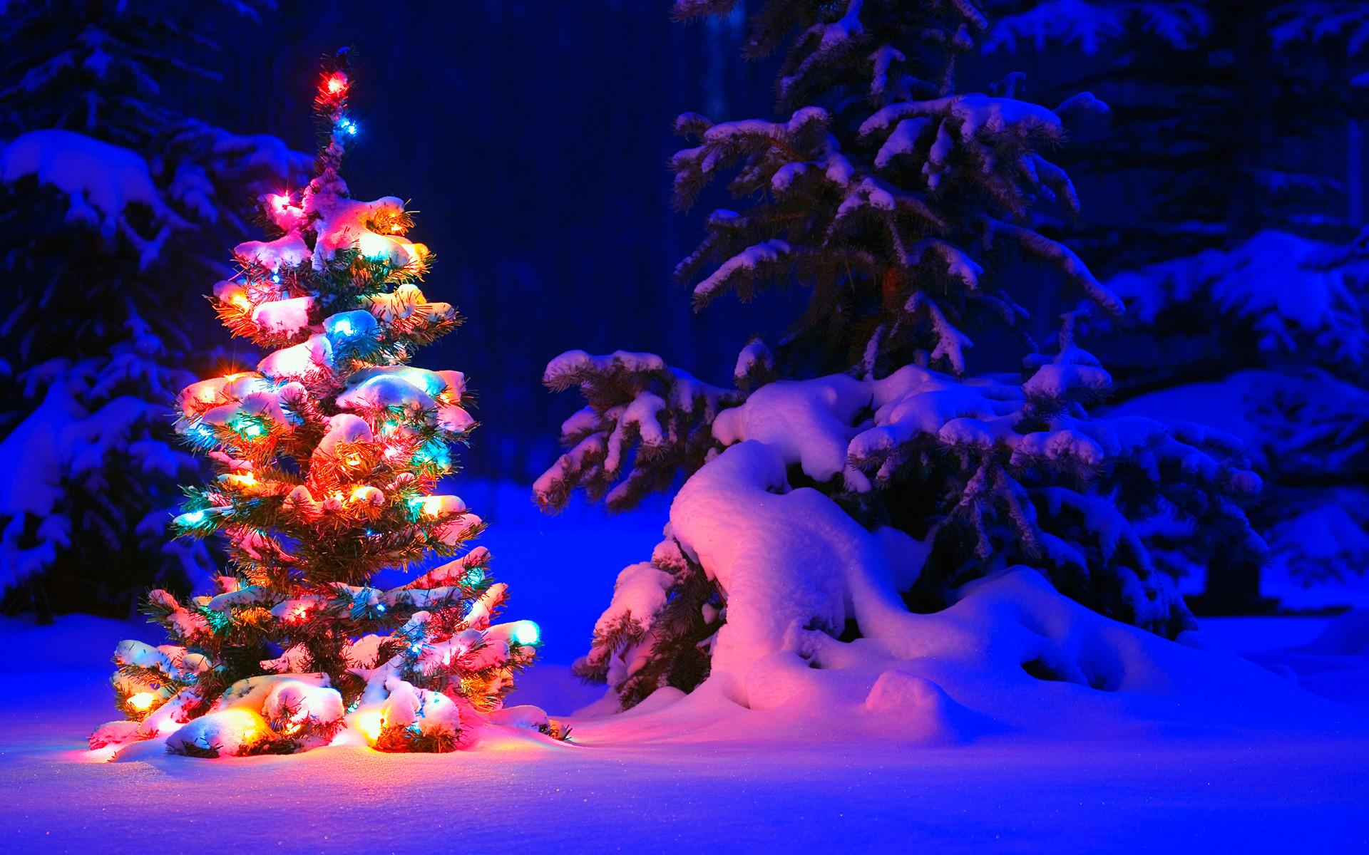 Snowy Christmas Tree Lights