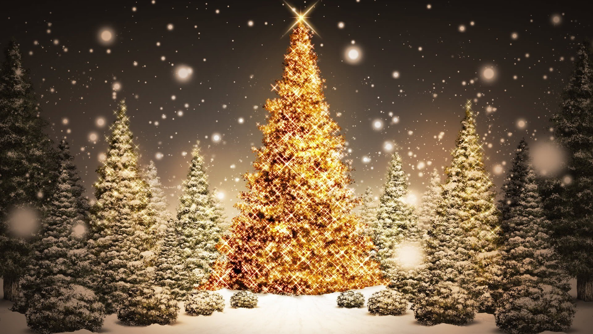 Christmas Tree HD Widescreen Wallpaper
