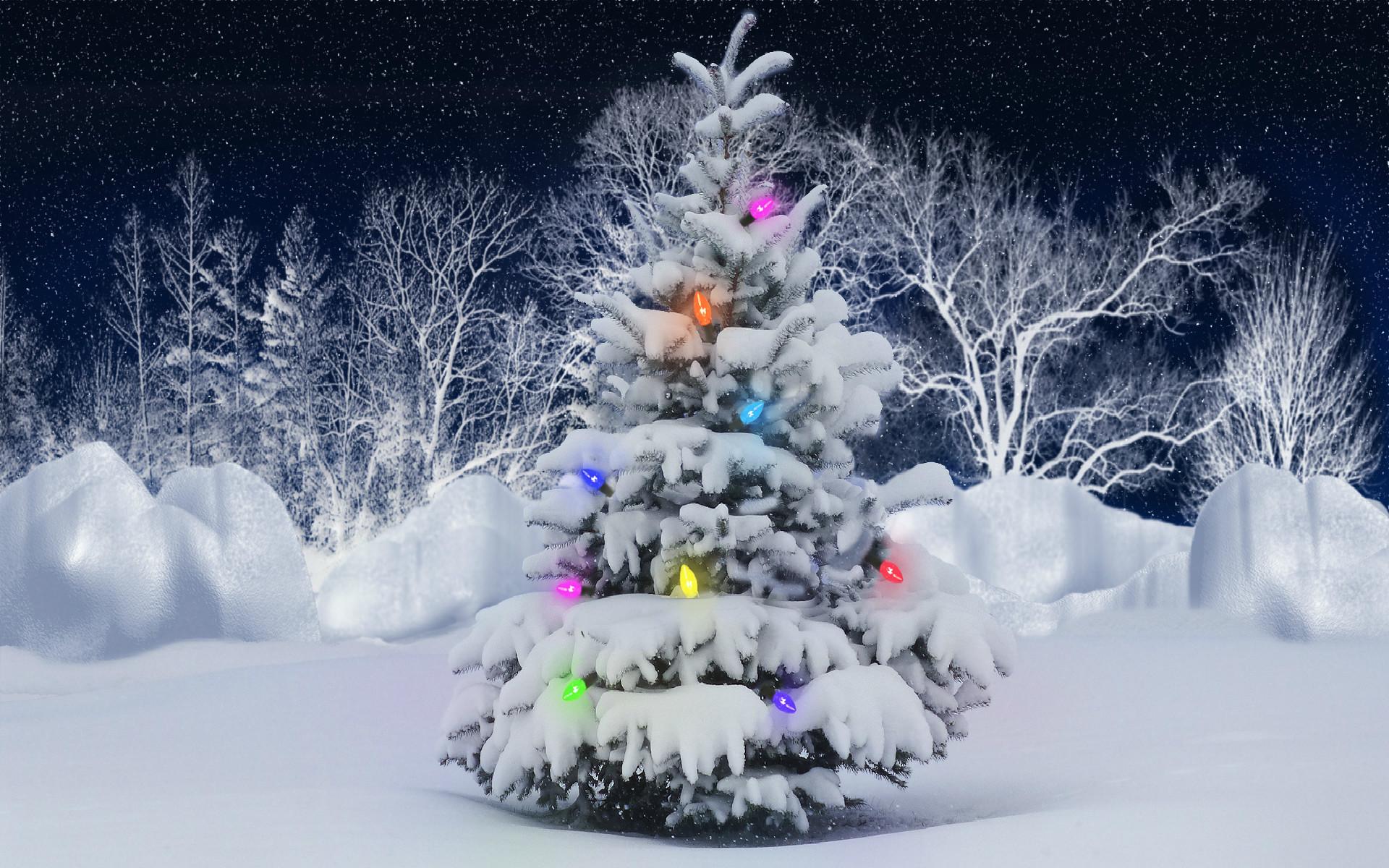 21 Christmas Tree Wallpapers