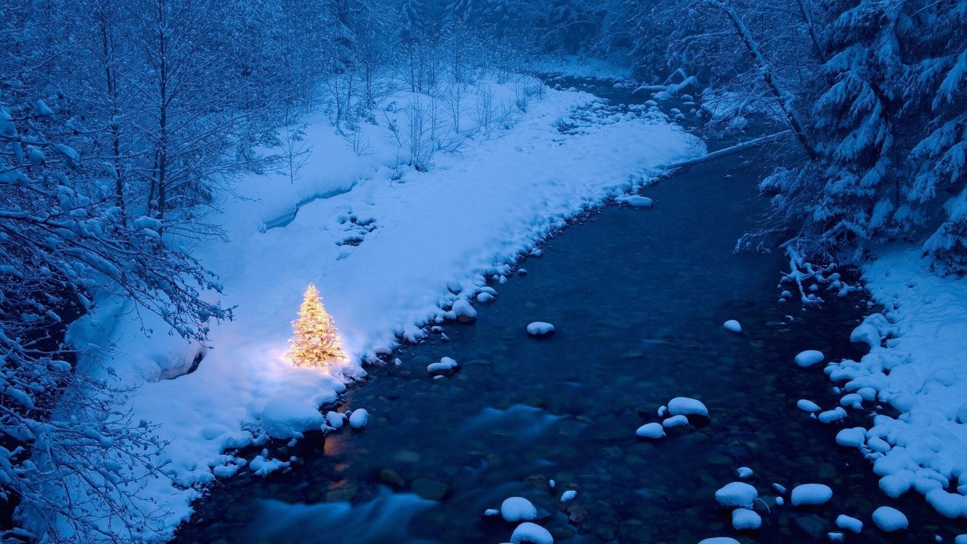 Christmas Tree HD 456432 …