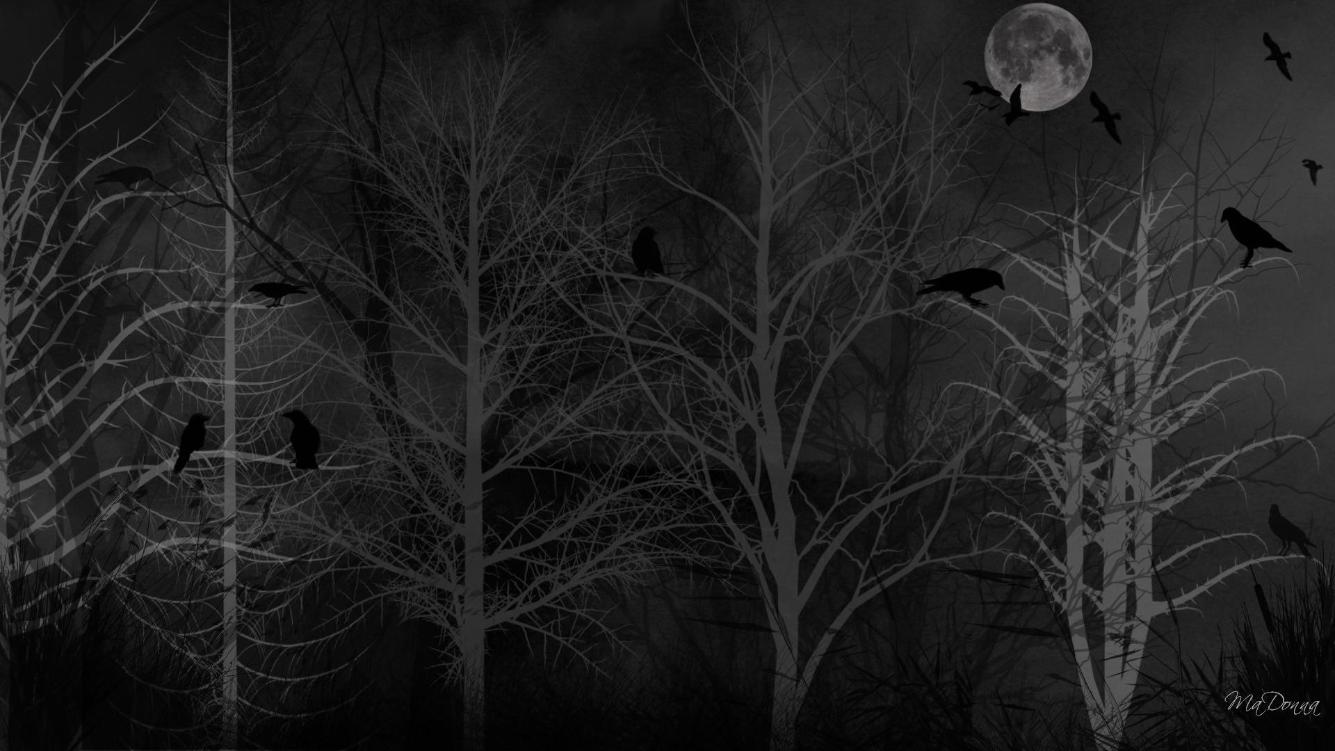 Spooky Tag – Dreads Winter Firefox Persona Birds Halloween Dark Forest  Spooky Moon Crows Black Wallpaper