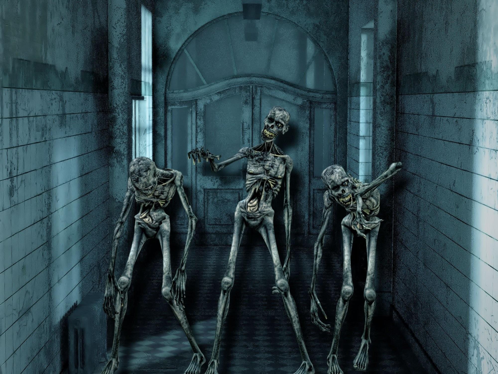 Horror Skeleton Skull Weird Halloween Scary Skull Wallpaper At Dark  Wallpapers