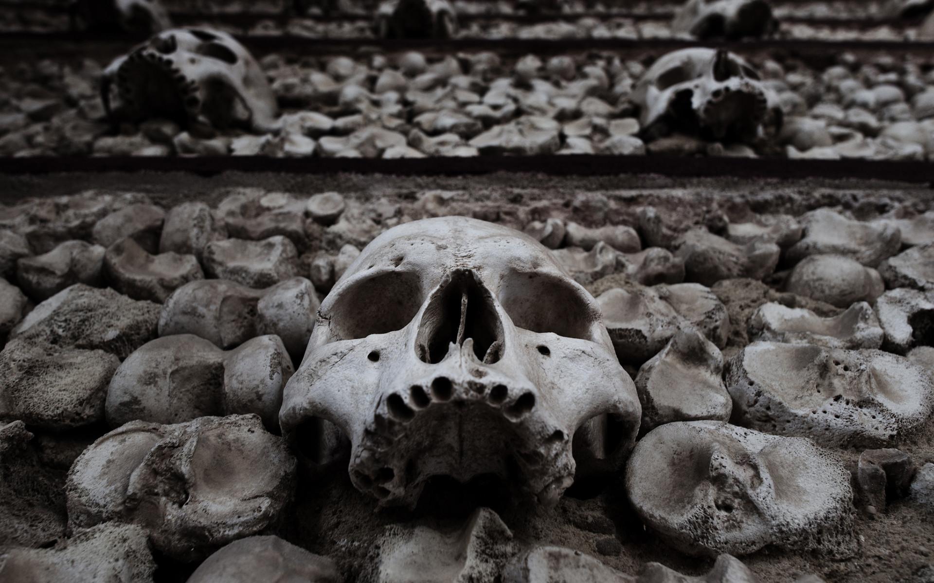 Dark fantasy death dead skulls skeleton halloween horror scary spooky creepy  black white eyes face wallpaper | | 26217 | WallpaperUP