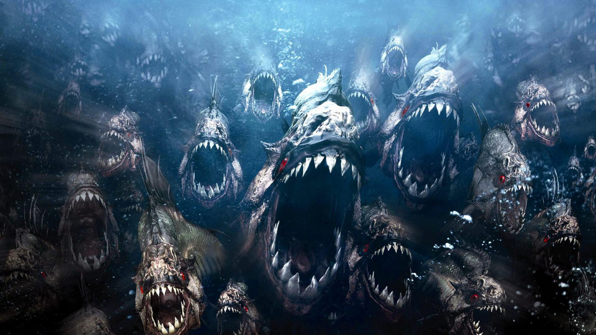 Piranha Killer HD Wallpaper
