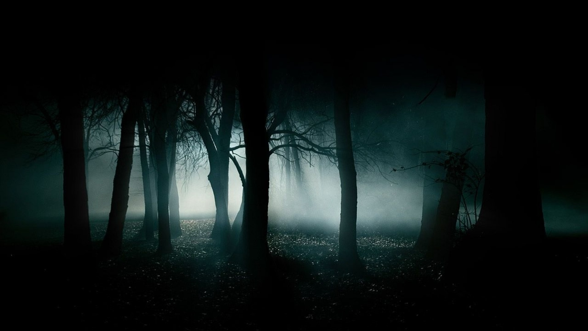 Most Haunting Scary Wallpapers of All TIme 1680×1050 Wallpapers Horror  Images (44 Wallpapers