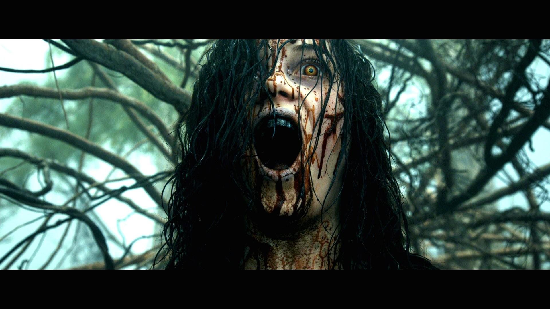 EVIL DEAD horror dark zombie blood dw wallpaper     236080    WallpaperUP