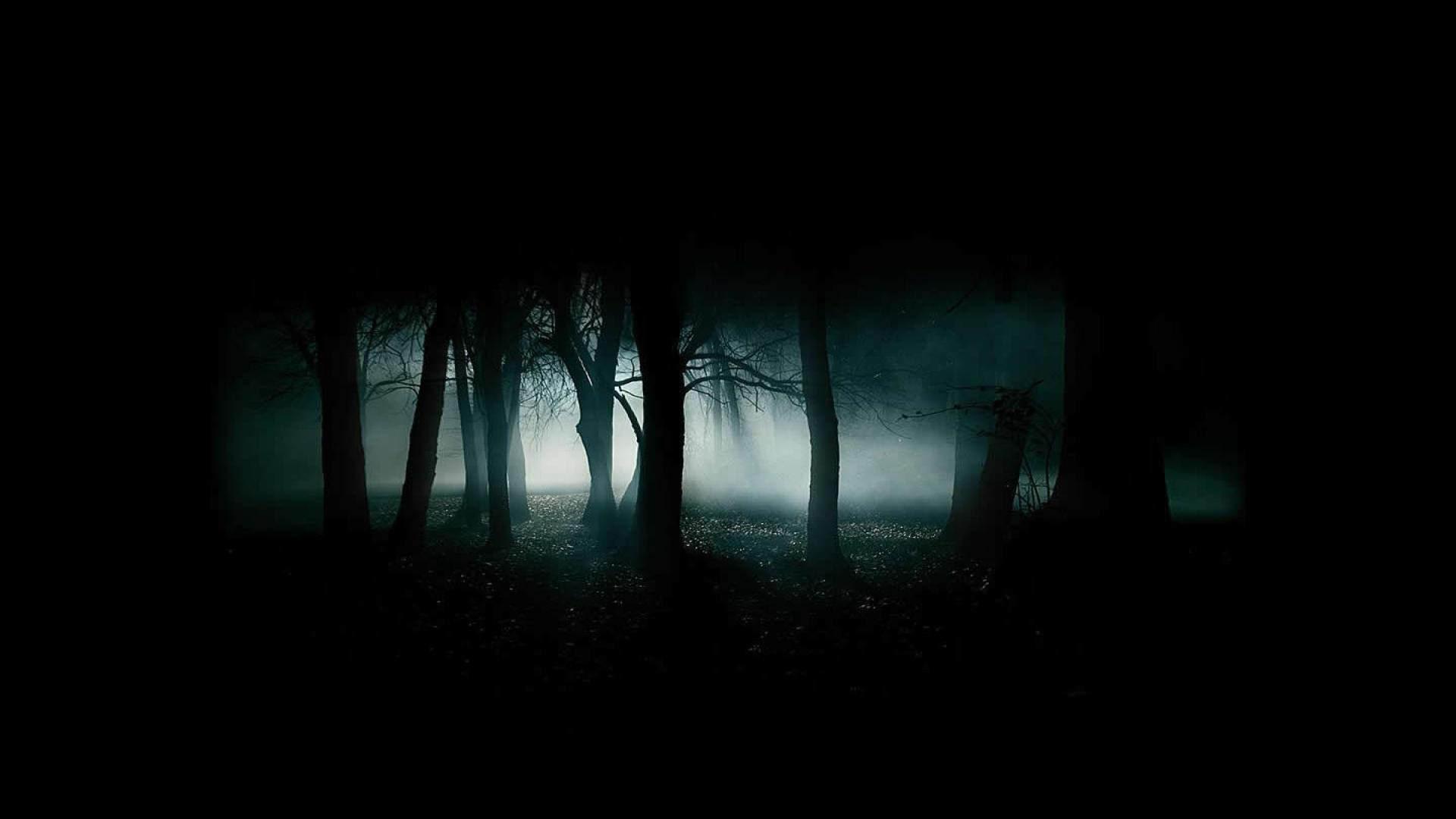 Dark Scary Forest Background