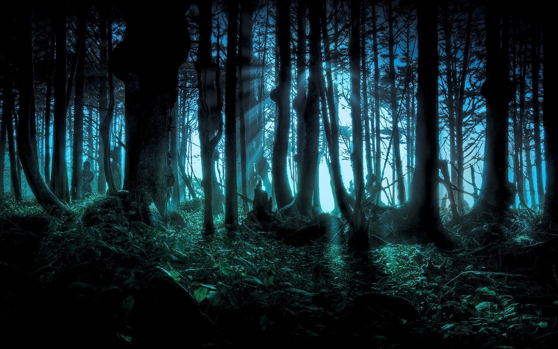 happy halloween wallpaper scary forest trees