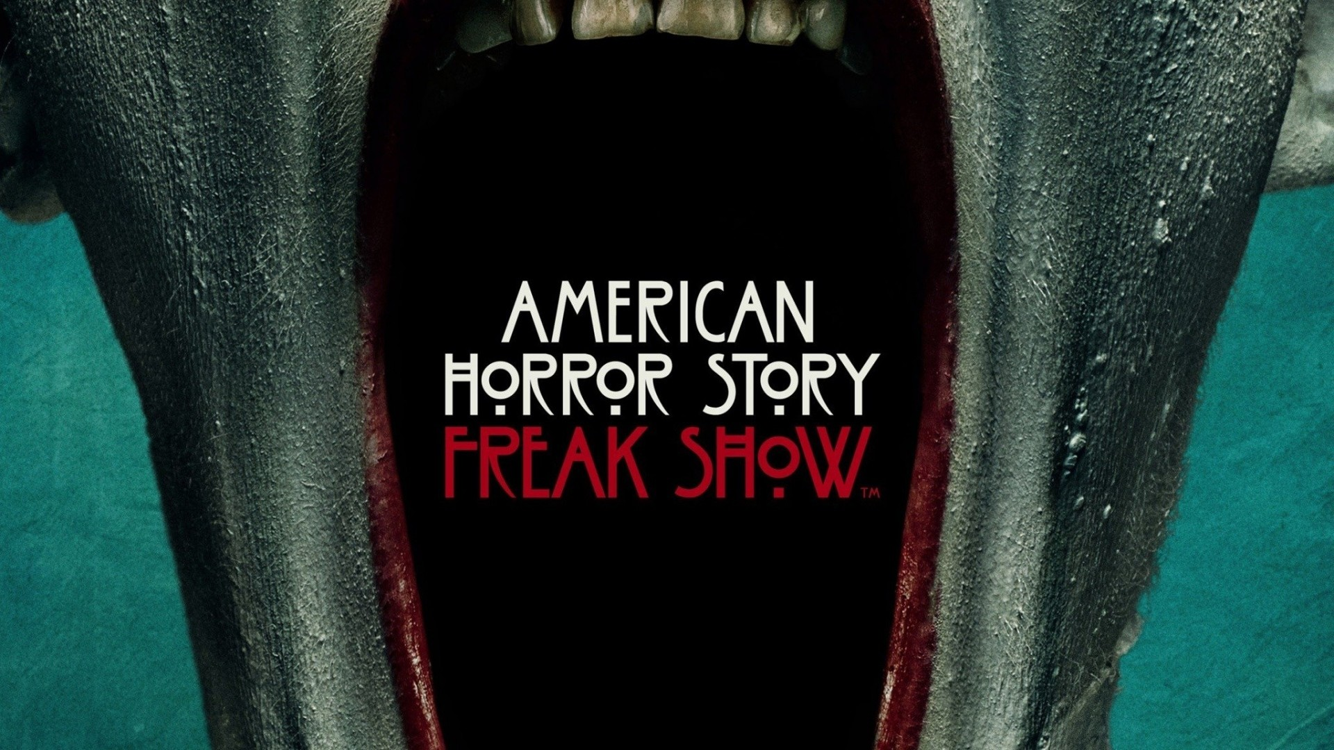 Top 20 American Horror Story Wallpaper
