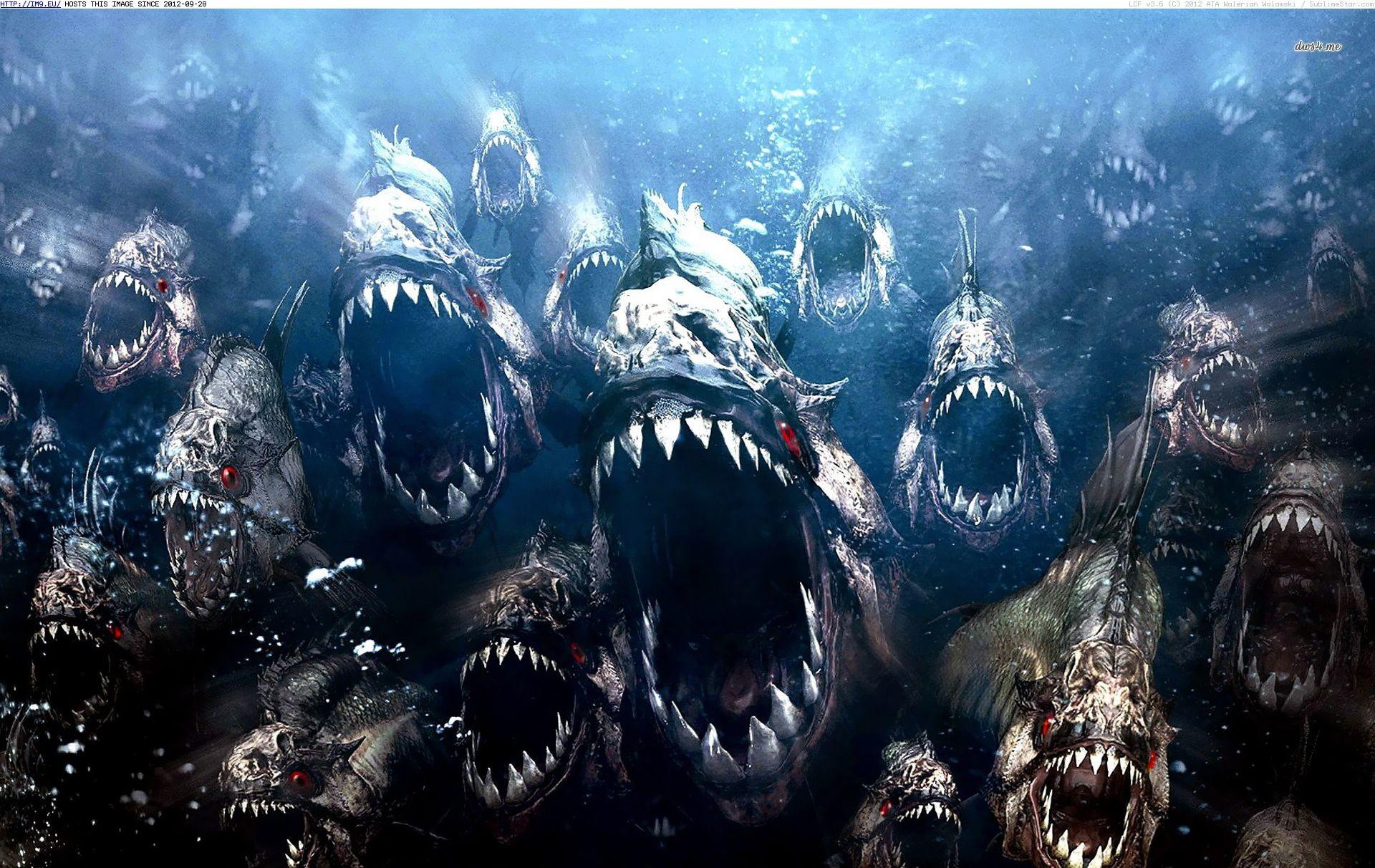 Piranha Movie Wallpaper