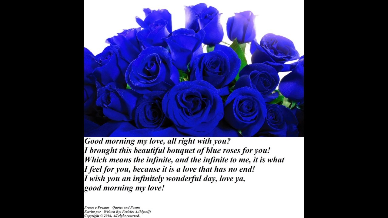 Good morning my love, brought a blue roses bouquet, i love you! [Message]  [Quotes and Poems]