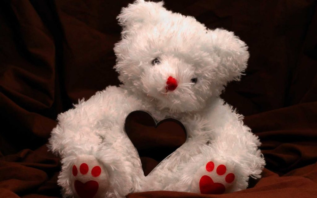 amazing teddy bear wallpapers New collection Taddy Bear Image Wallpapers  Wallpapers)