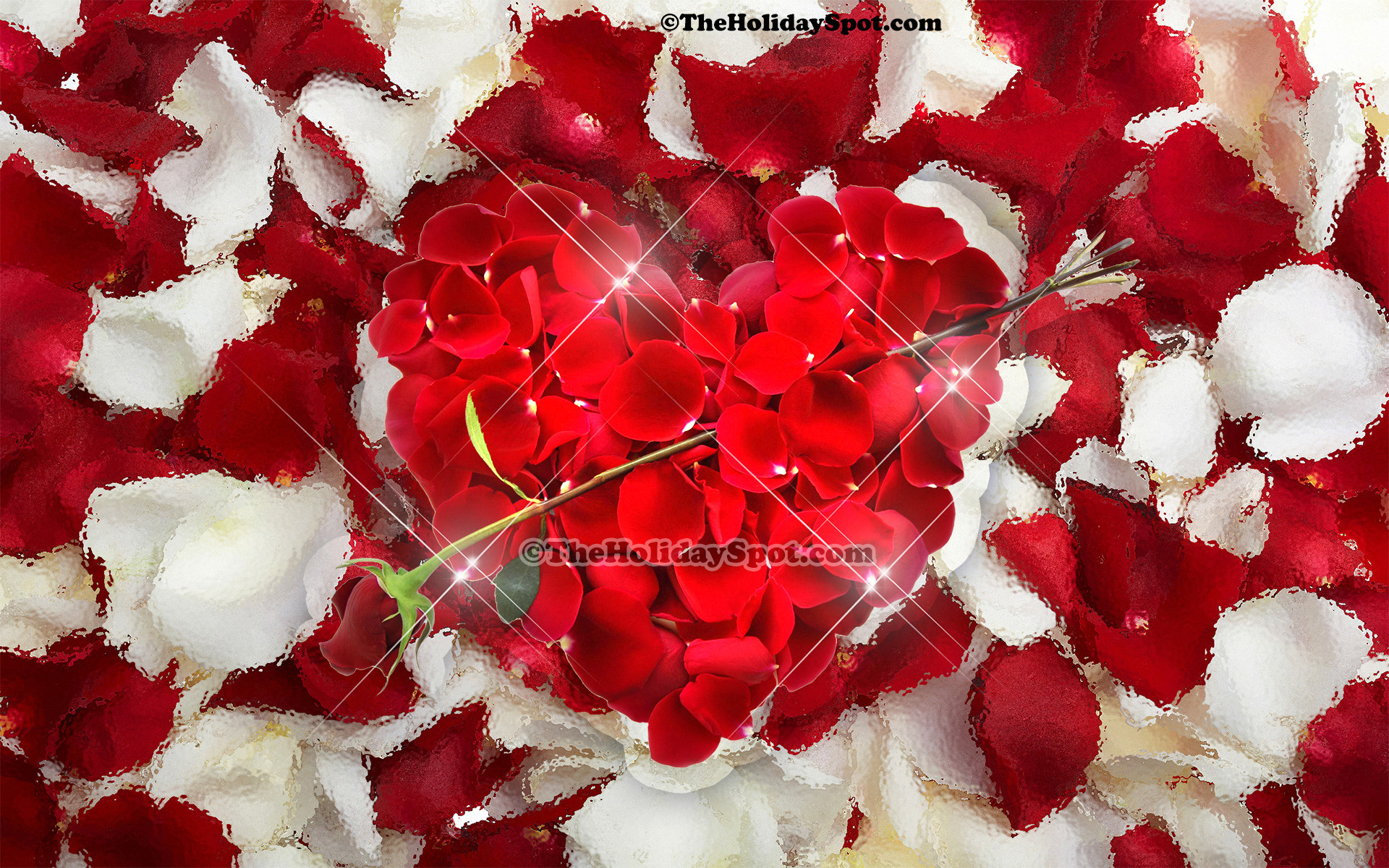 Valentine's Day background themed on love showing a heart made of rose  petals