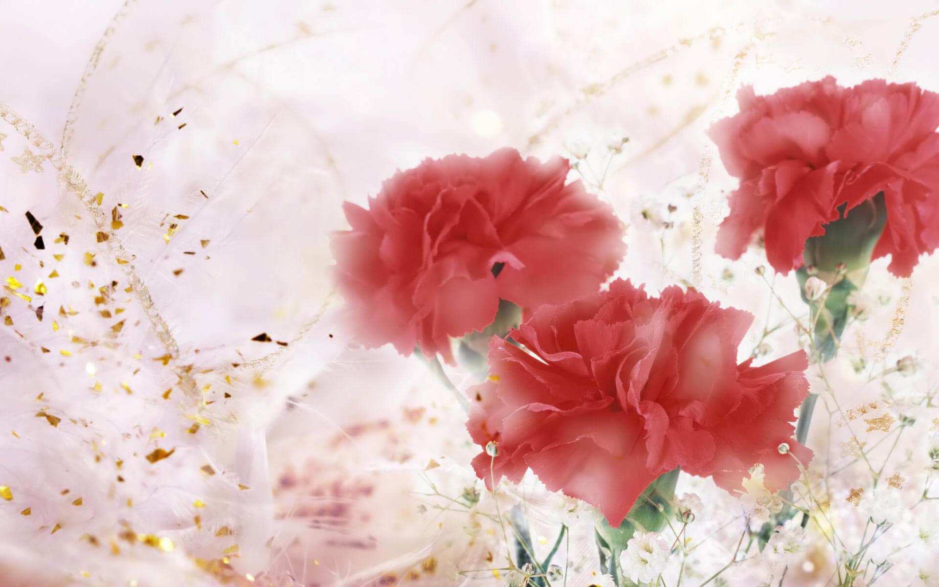 … Gifts-Flowers-Valentine-desktop-backgrounds …