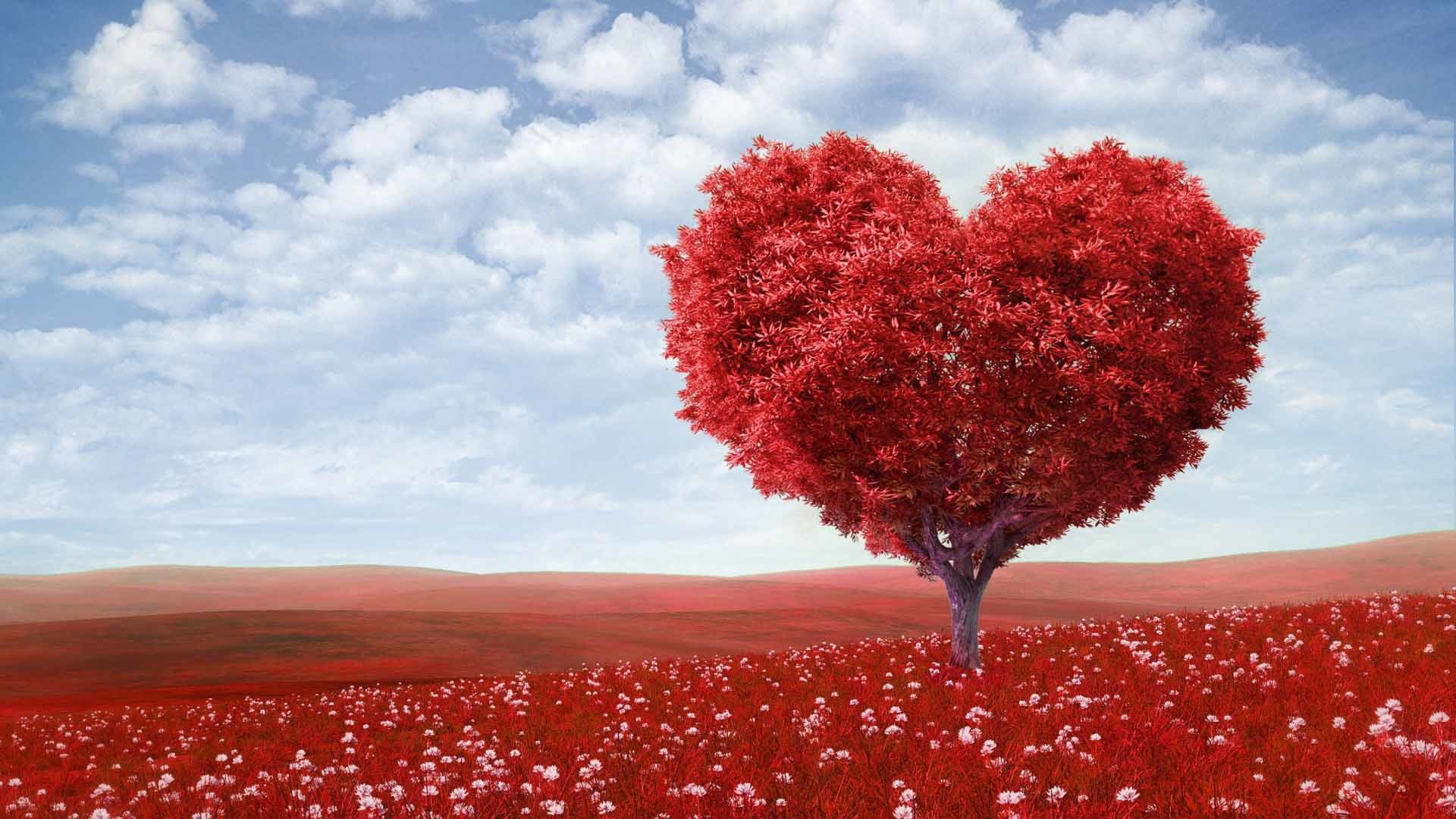 Red heart shape tree landscape love wallpaper