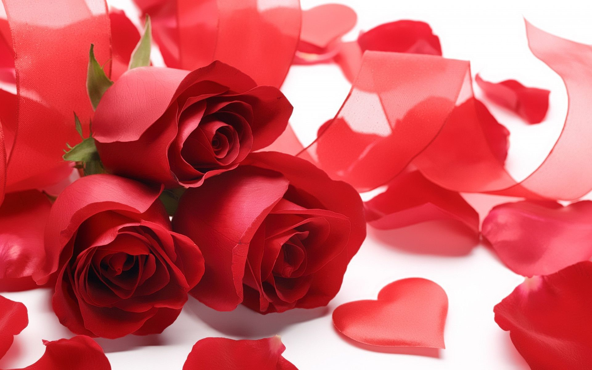 Red Rose Heart Wallpapers – Wallpaper Cave