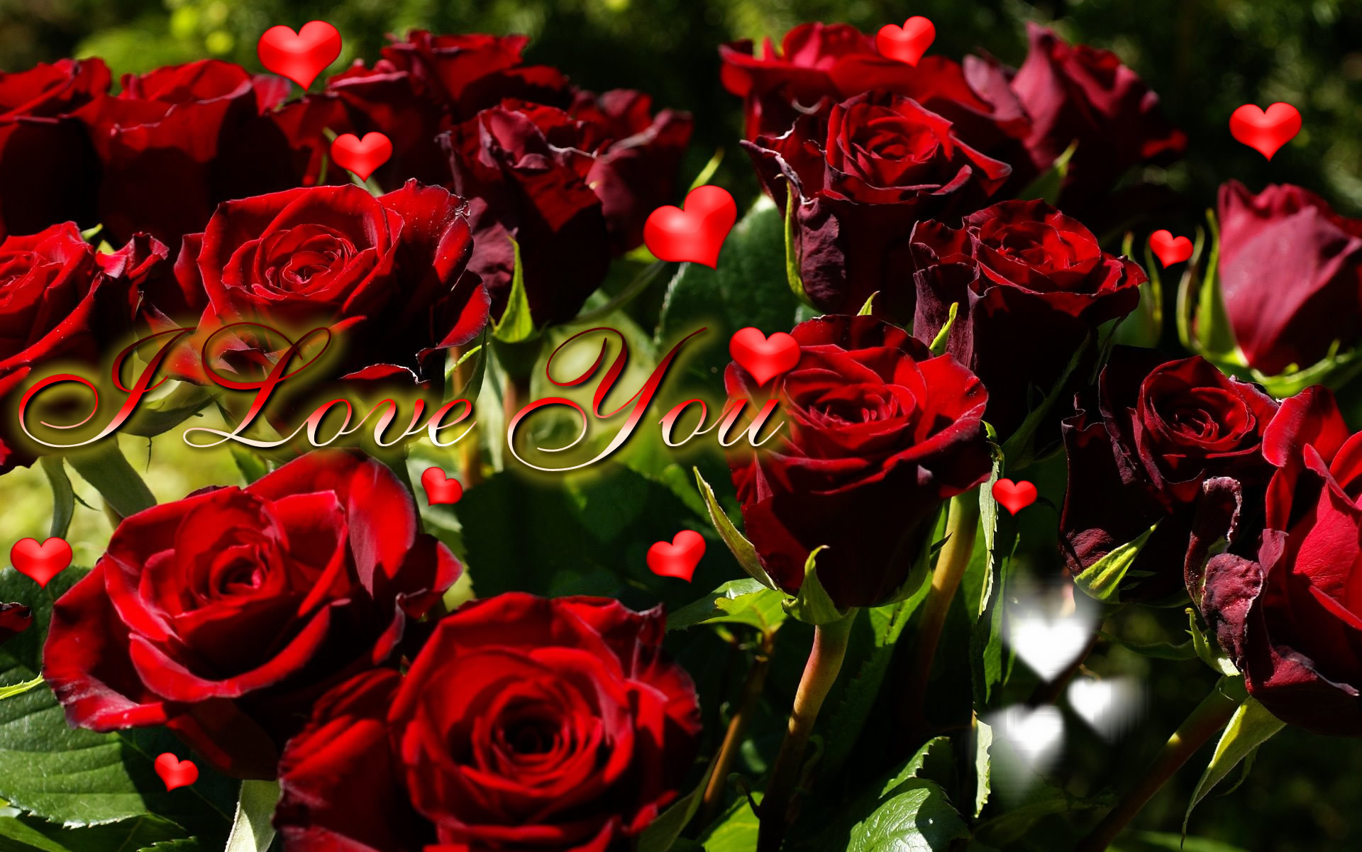 I Love You Roses And Hearts Love You Mr Arrogant Forever Quotes So Much  Images Baby to the moon and Back More Mom Wallpapers Pics Photos