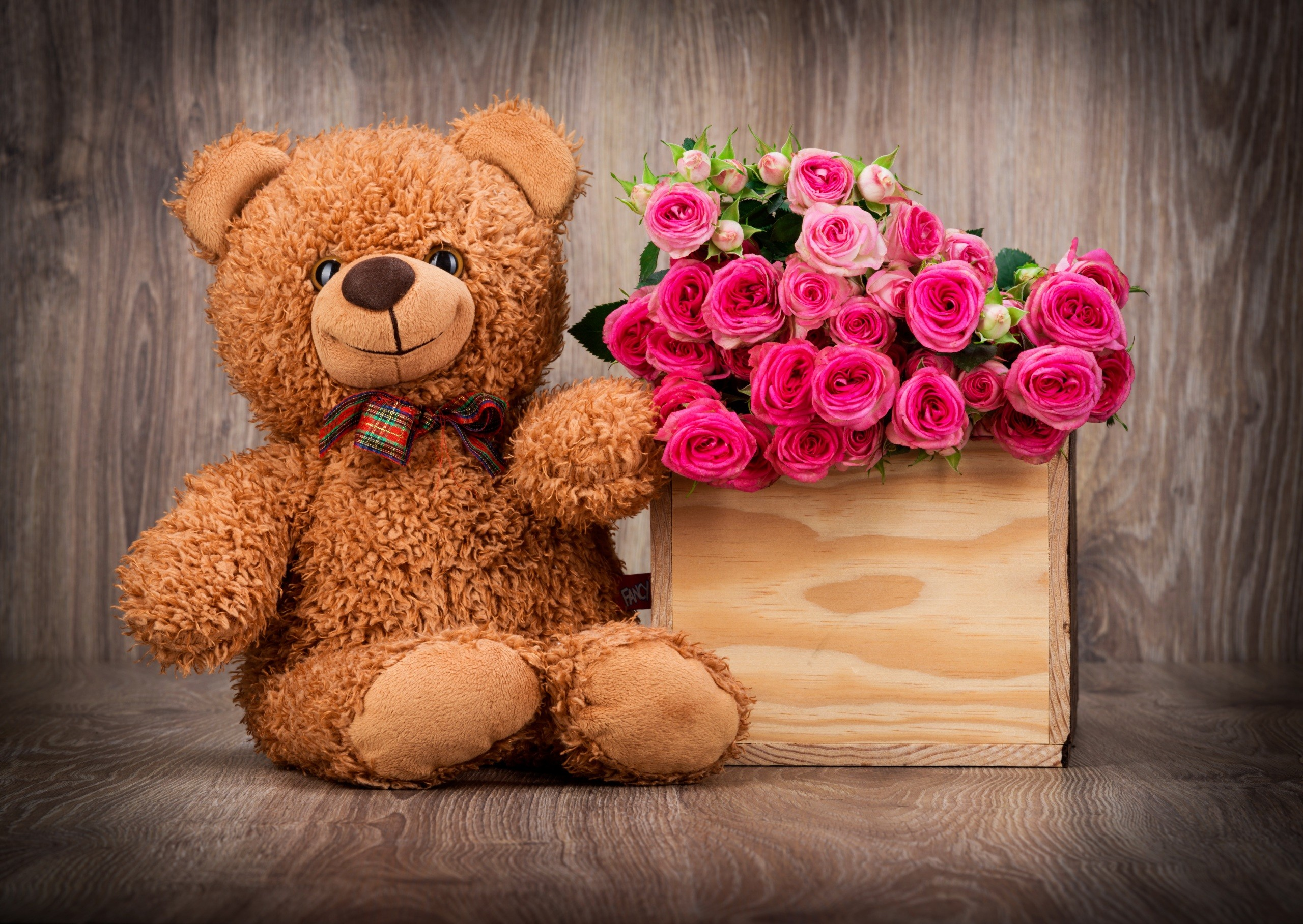 Cute Teddy Bear Wallpaper with Pink Roses in Box | HD Wallpapers for .