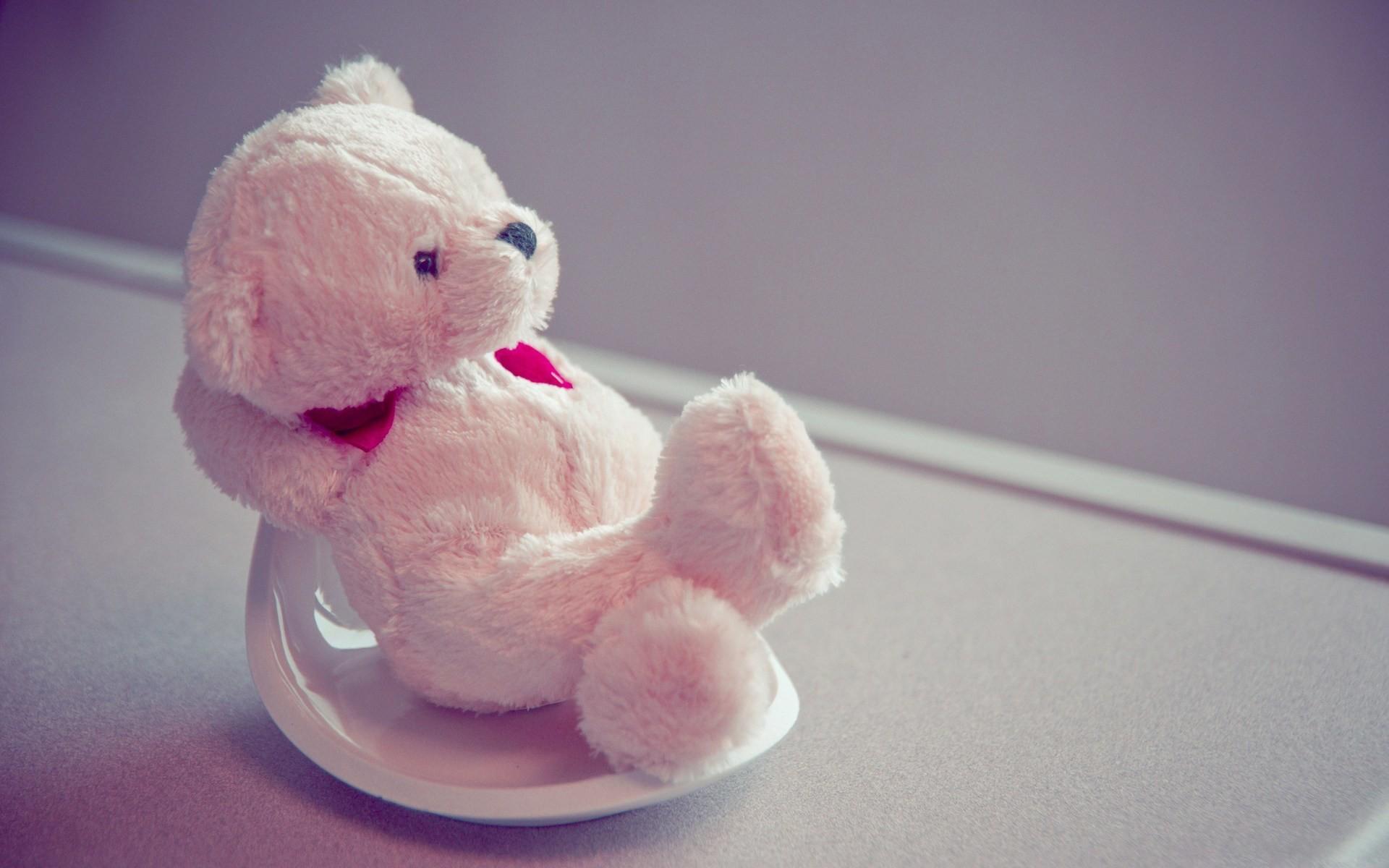 Bear. teddy bear day