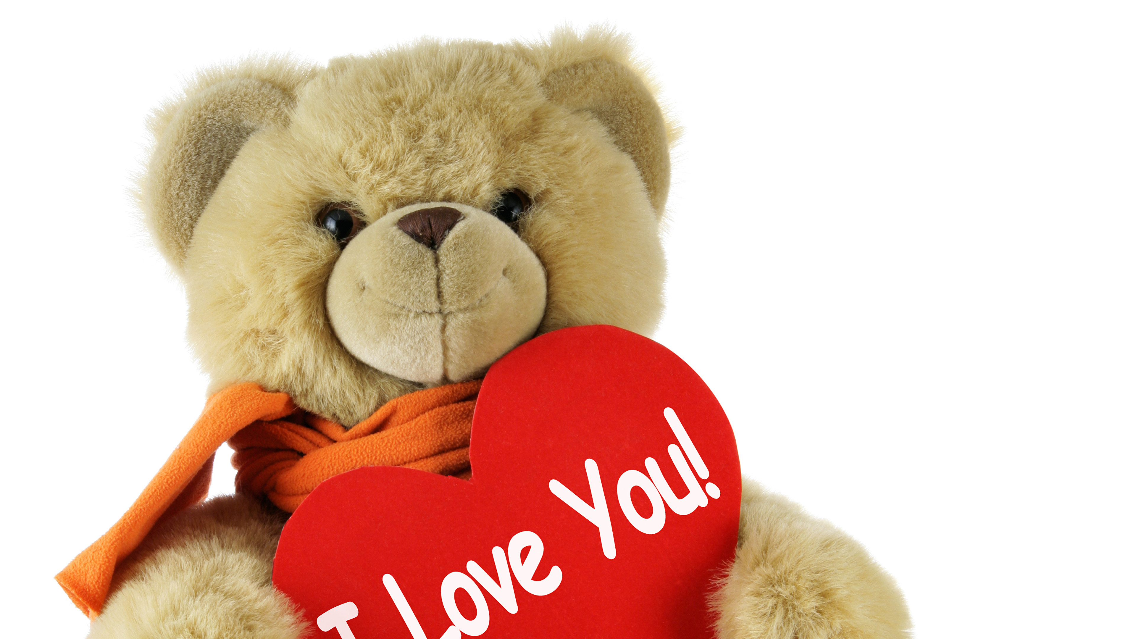 Wallpaper Valentine's Day English Heart Love Teddy bear White background  3840×2160