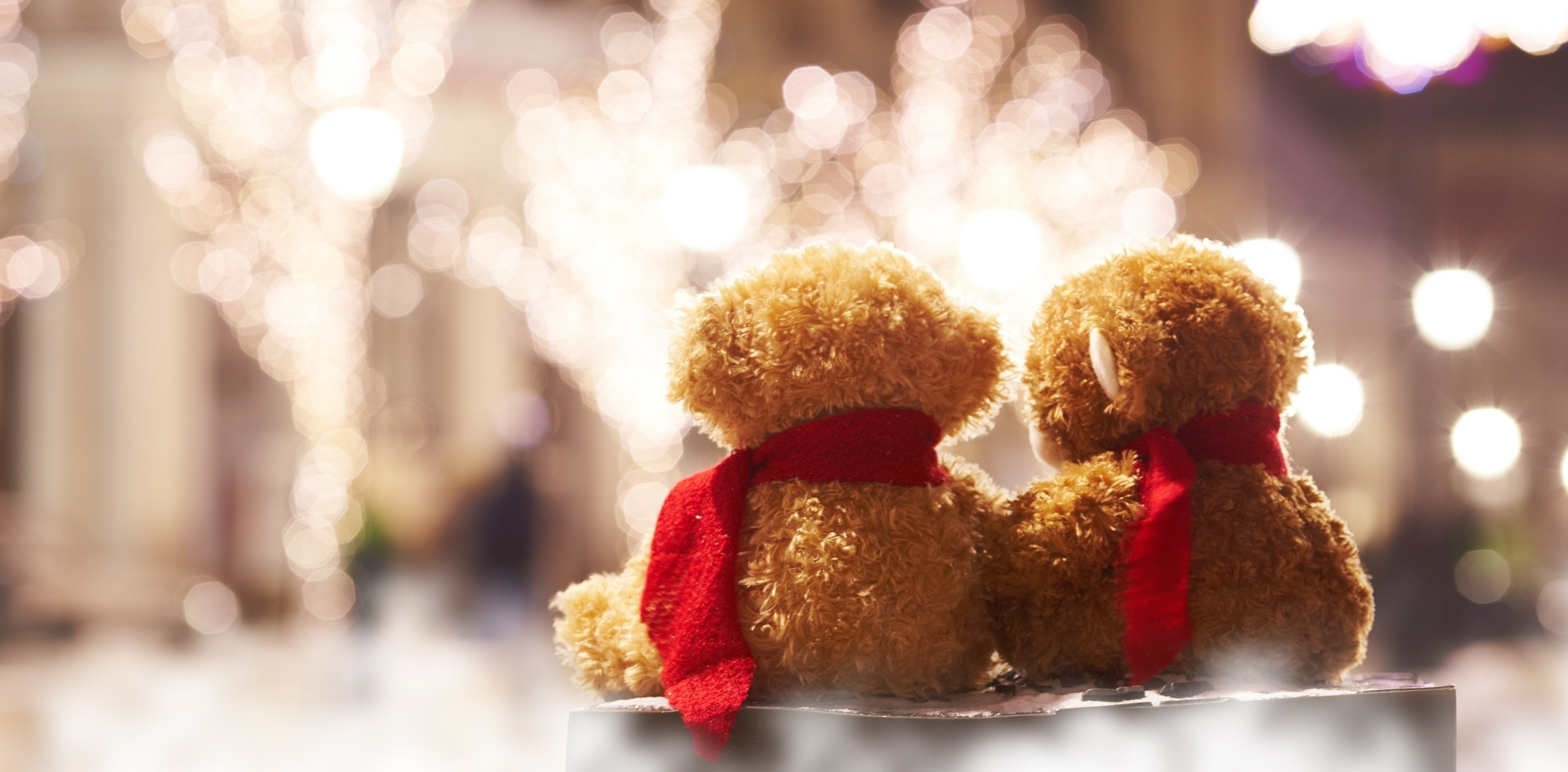 Teddy bear romance together lights love mood toy wallpaper | |  848754 | WallpaperUP