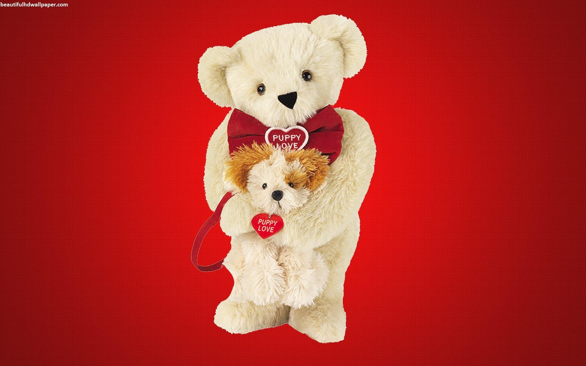 56-Puppy-love-teddy-bear(Teddy-Bear-Wallpaper)