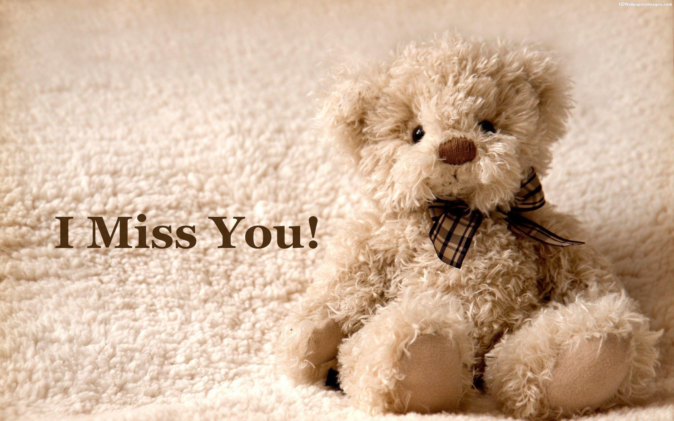 I Miss You Cute Teddy Bear HD Wallpaper