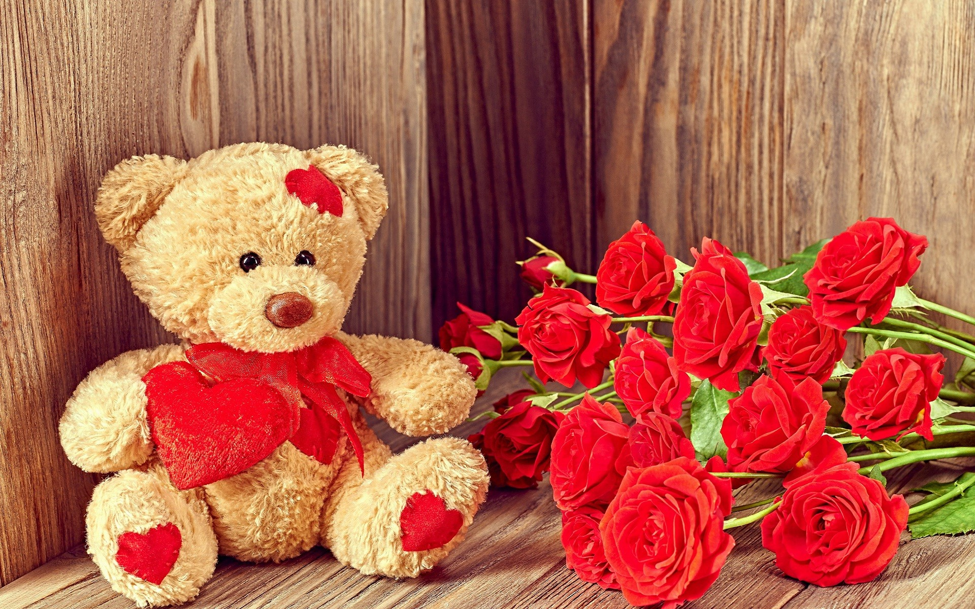 Teddy bear wallpapers with flowers – photo#18