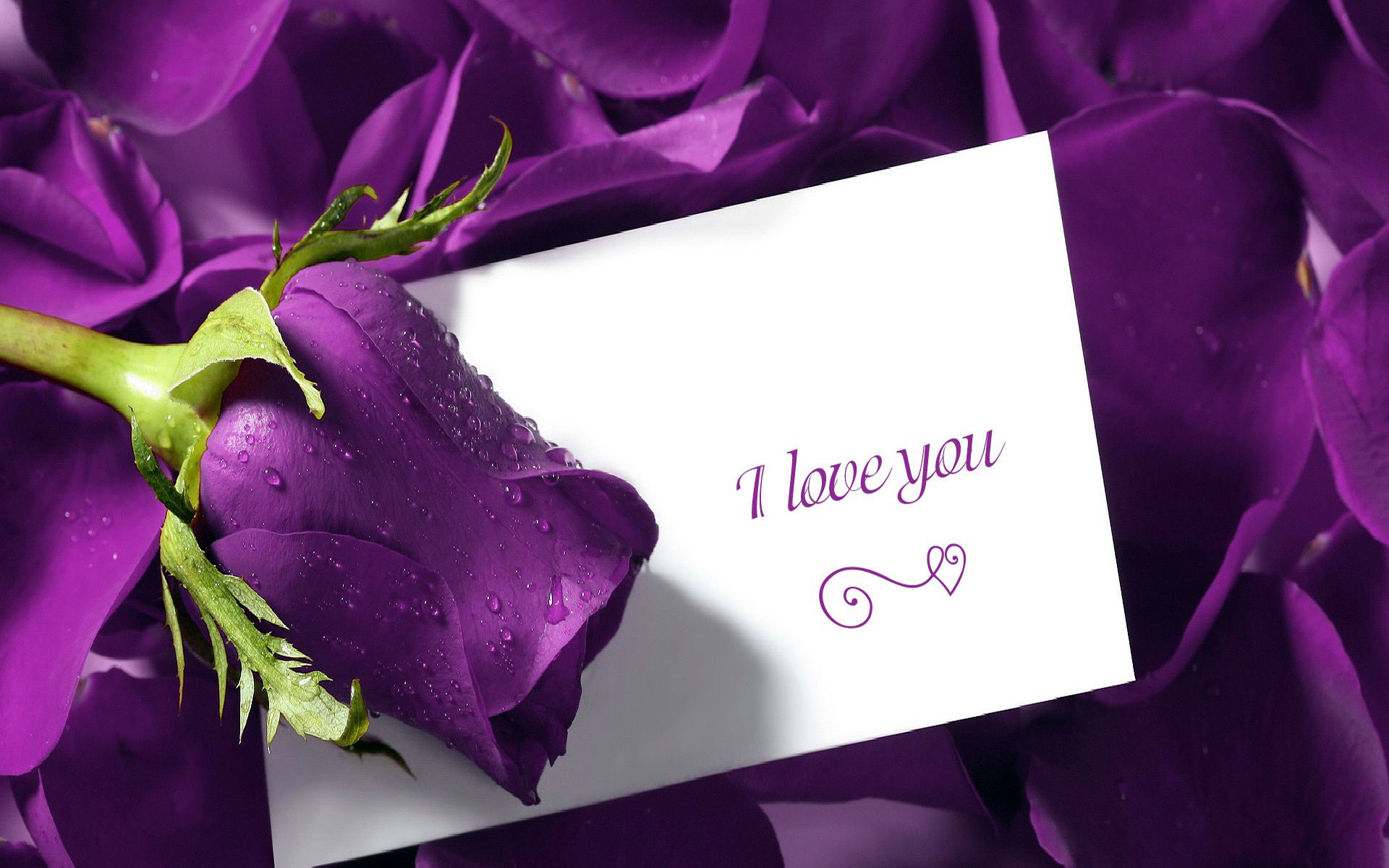 i love you cute images