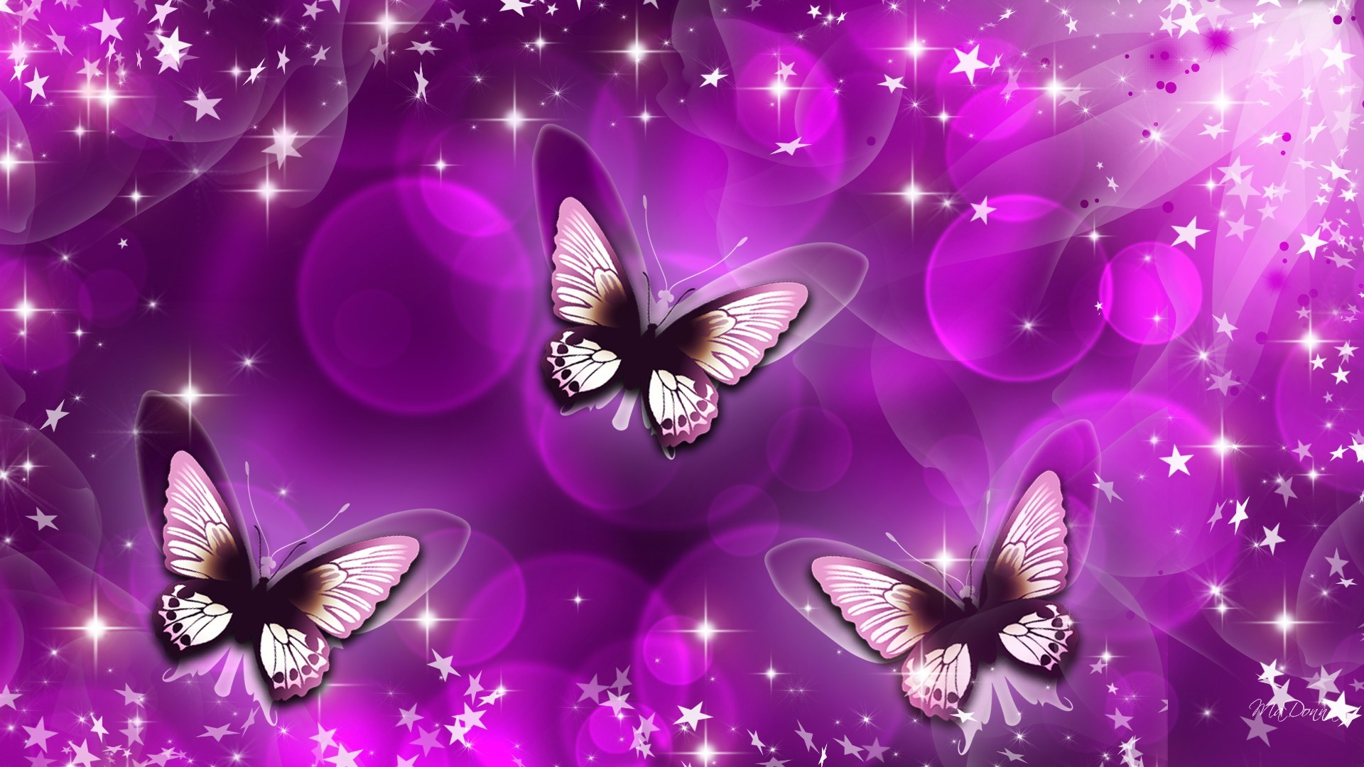 … sparkly erfly wallpaper the wallpaper …