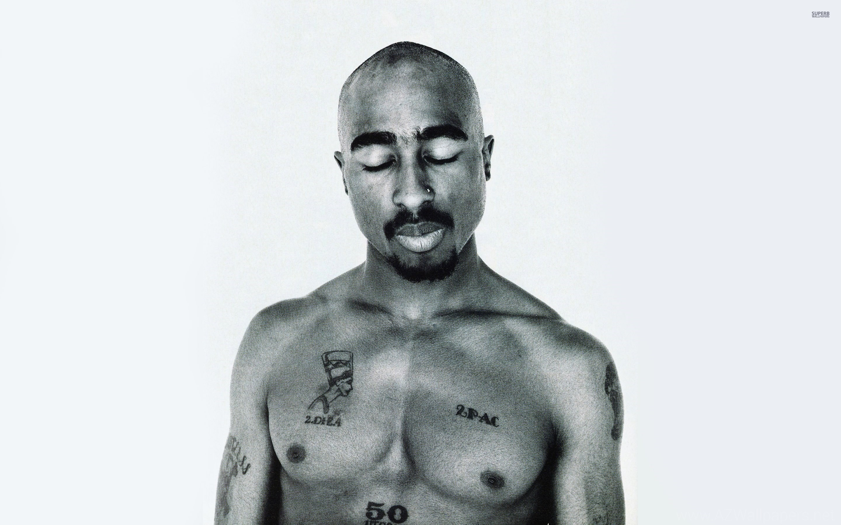 2Pac Wallpapers » WallDevil Best Free HD Desktop And Mobile .