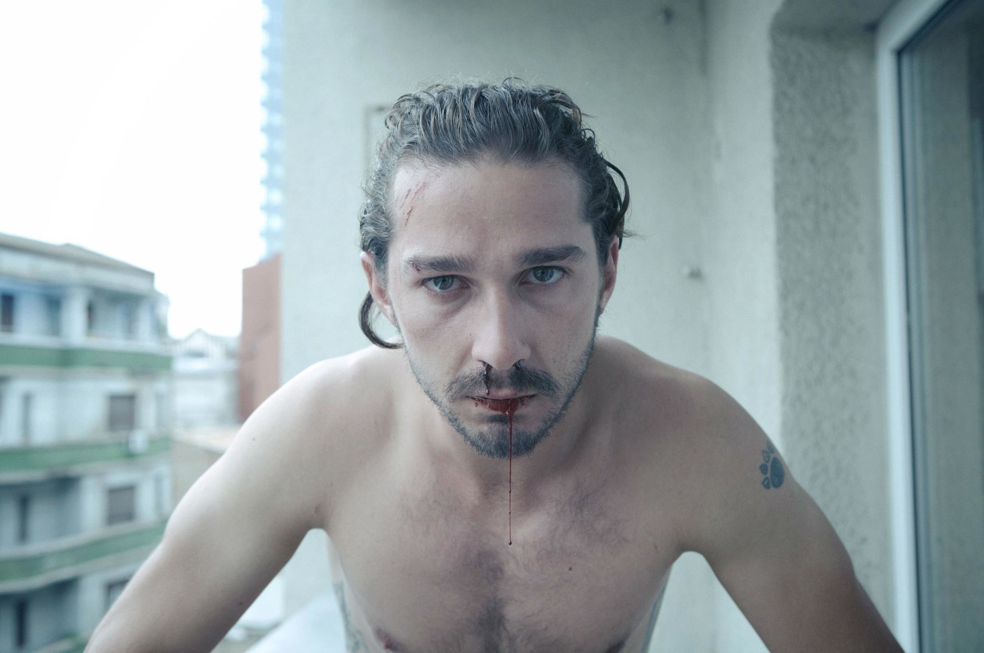 Nice Images Collection: Shia Labeouf Desktop Wallpapers