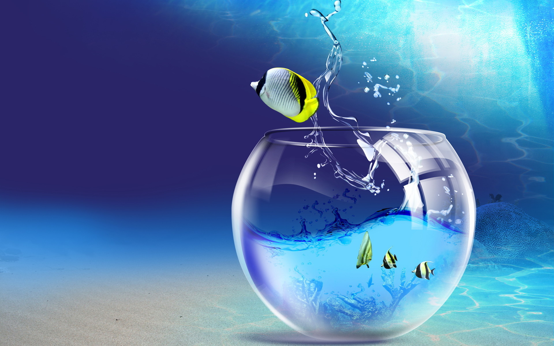 Fishy Life Wallpapers | HD Wallpapers