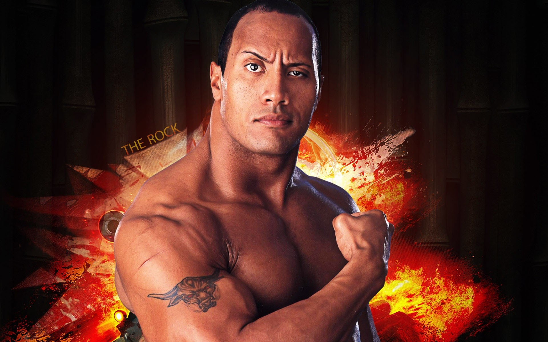 wwe the rock mobile free wallpaper download