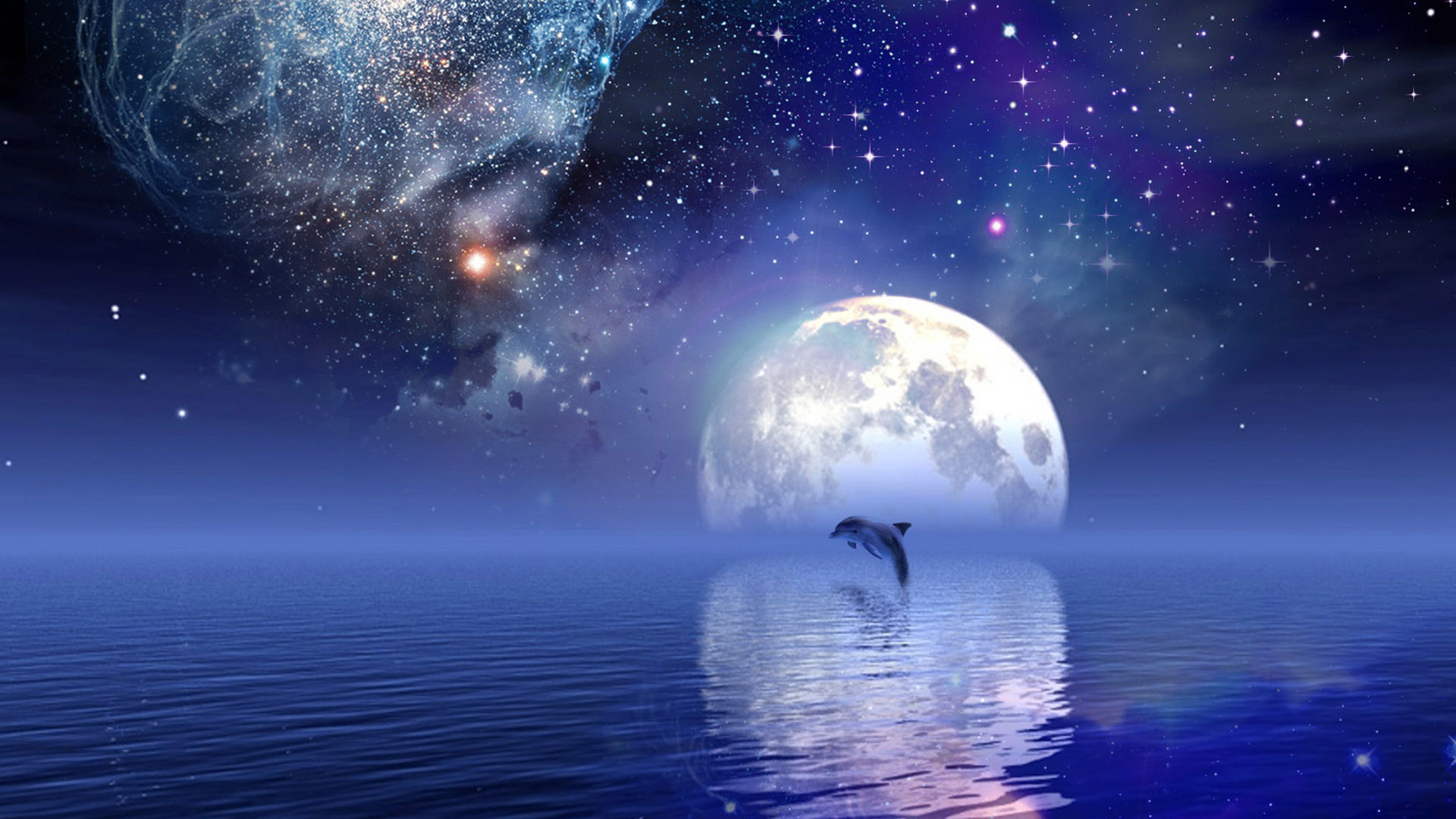 Dolphins Making a Heart at Sunset   Dolphin Heart Wallpaper Wallpaper  Dolphin Water   Dolphins   Pinterest   Wallpaper