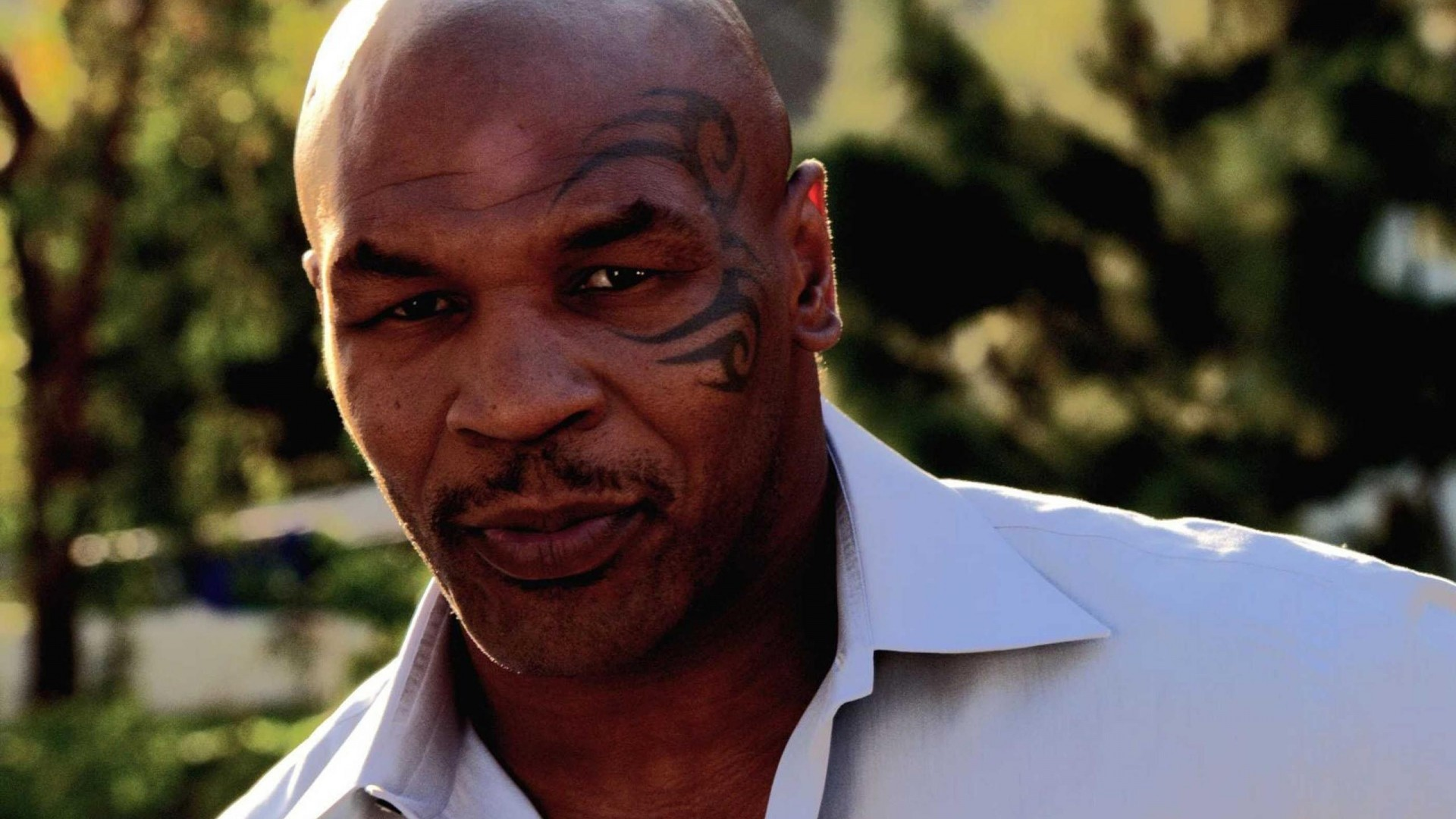 The Wallpapers Mike Tyson