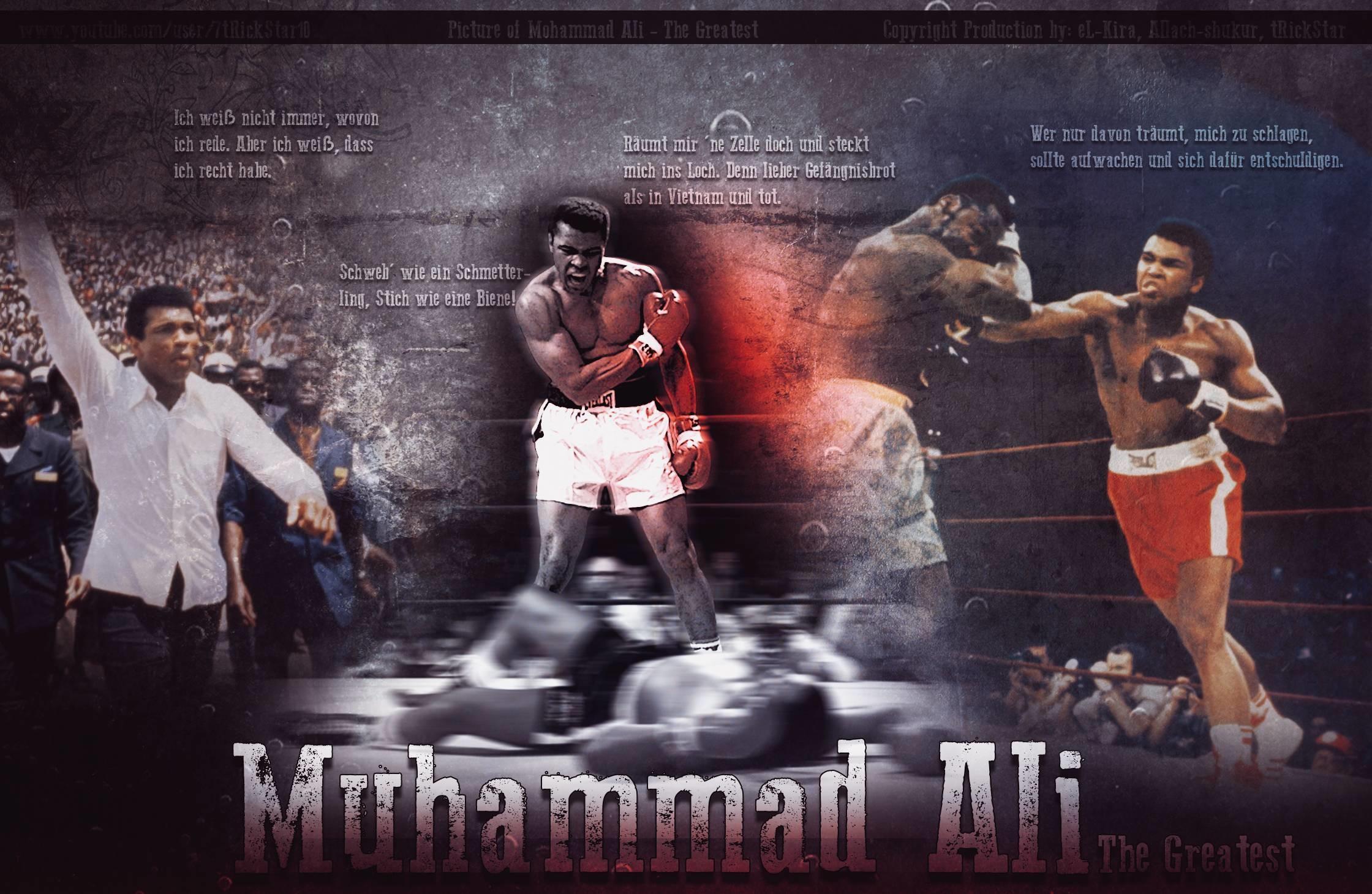 Muhammad Ali 2014 Wallpaper Wide or HD | Male Celebrities Wallpapers