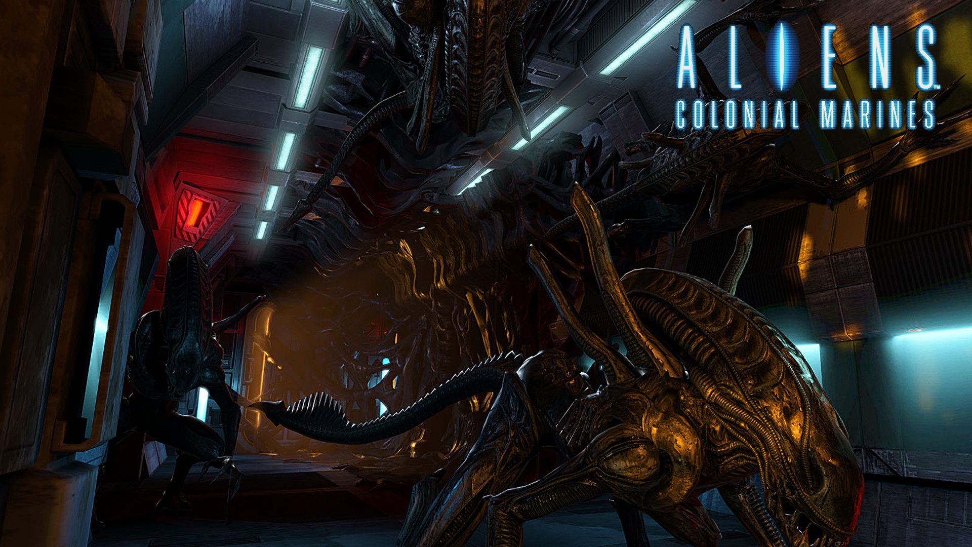 … Wallpapers of Aliens Colonial Marines HDQ Cover …