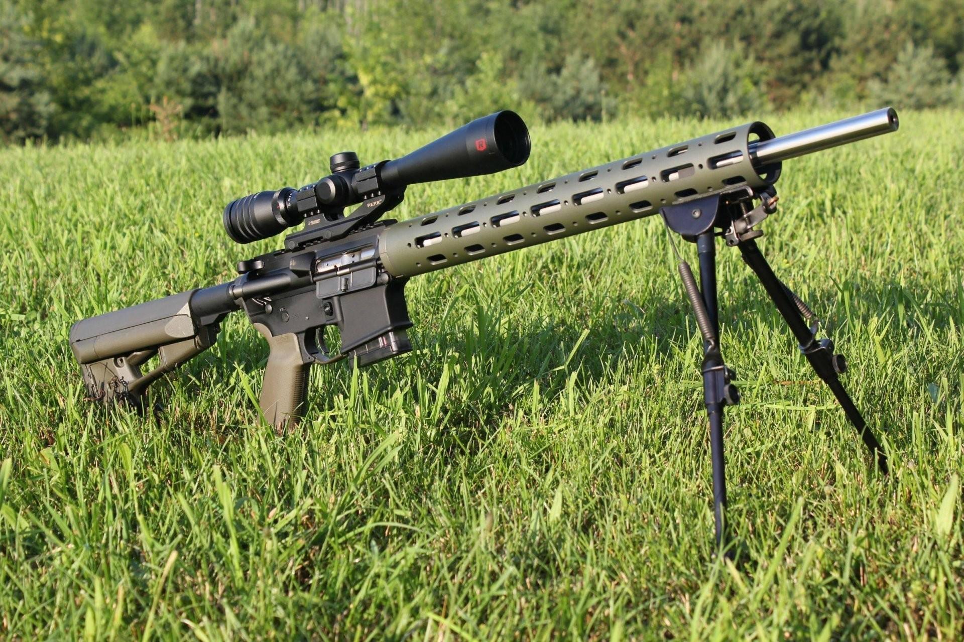 varmint ar-15 modification sniper variant optics fry grass