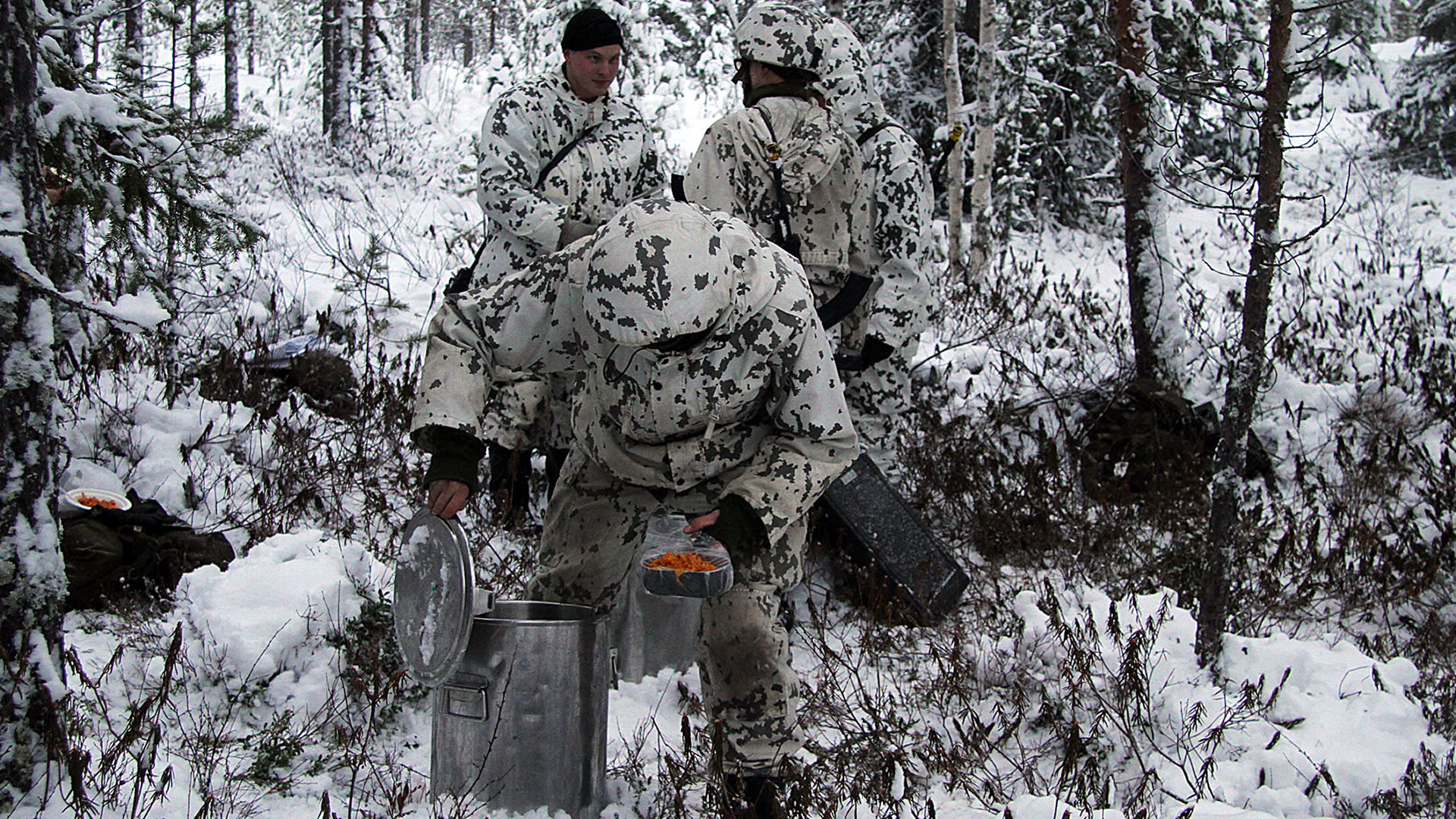 Finland Army Winter Camo