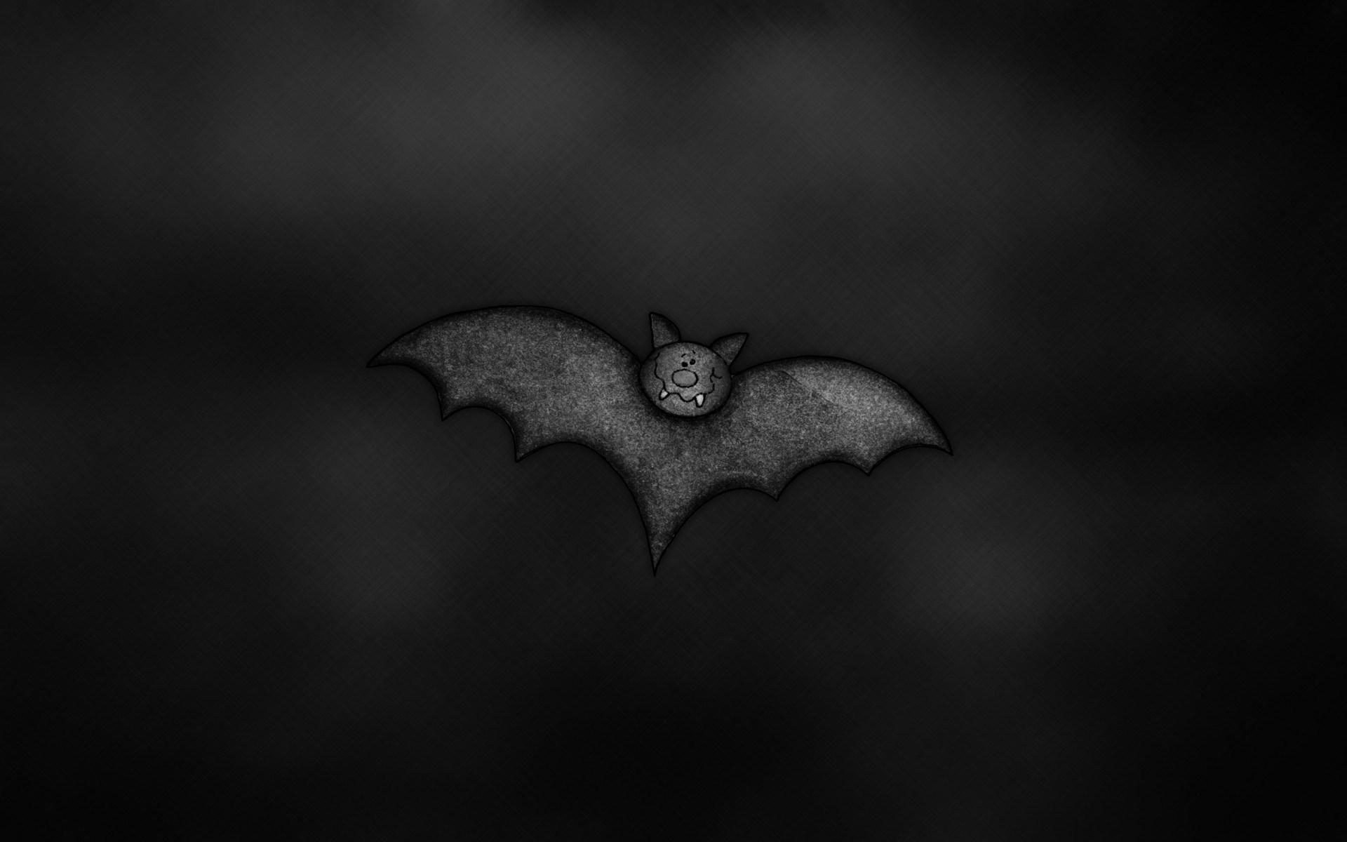 wallpaper.wiki-Funny-Bat-Computer-Photo-PIC-WPC009840