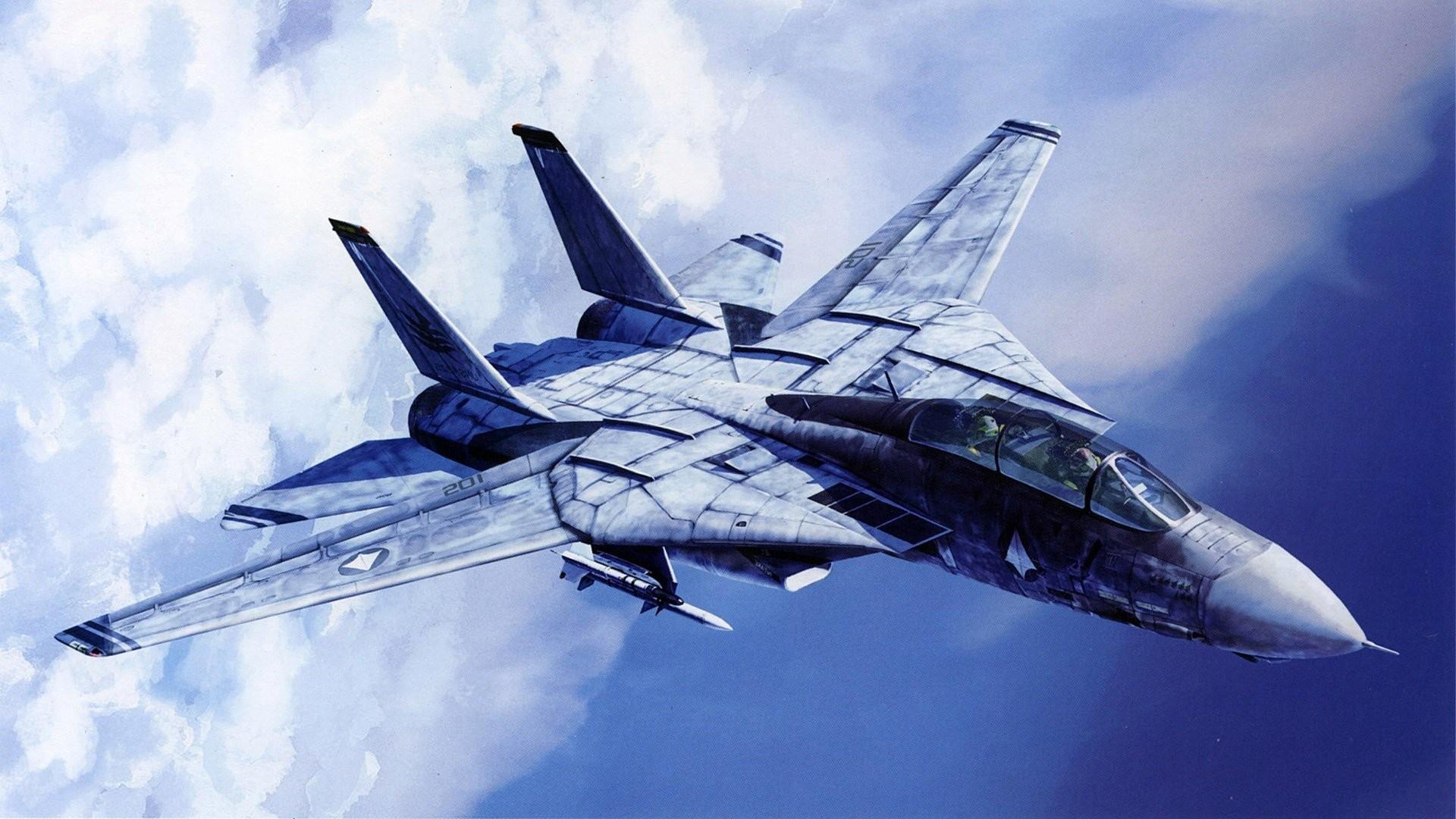 Aircraft F-14 Tomcat wallpaper     341030   WallpaperUP