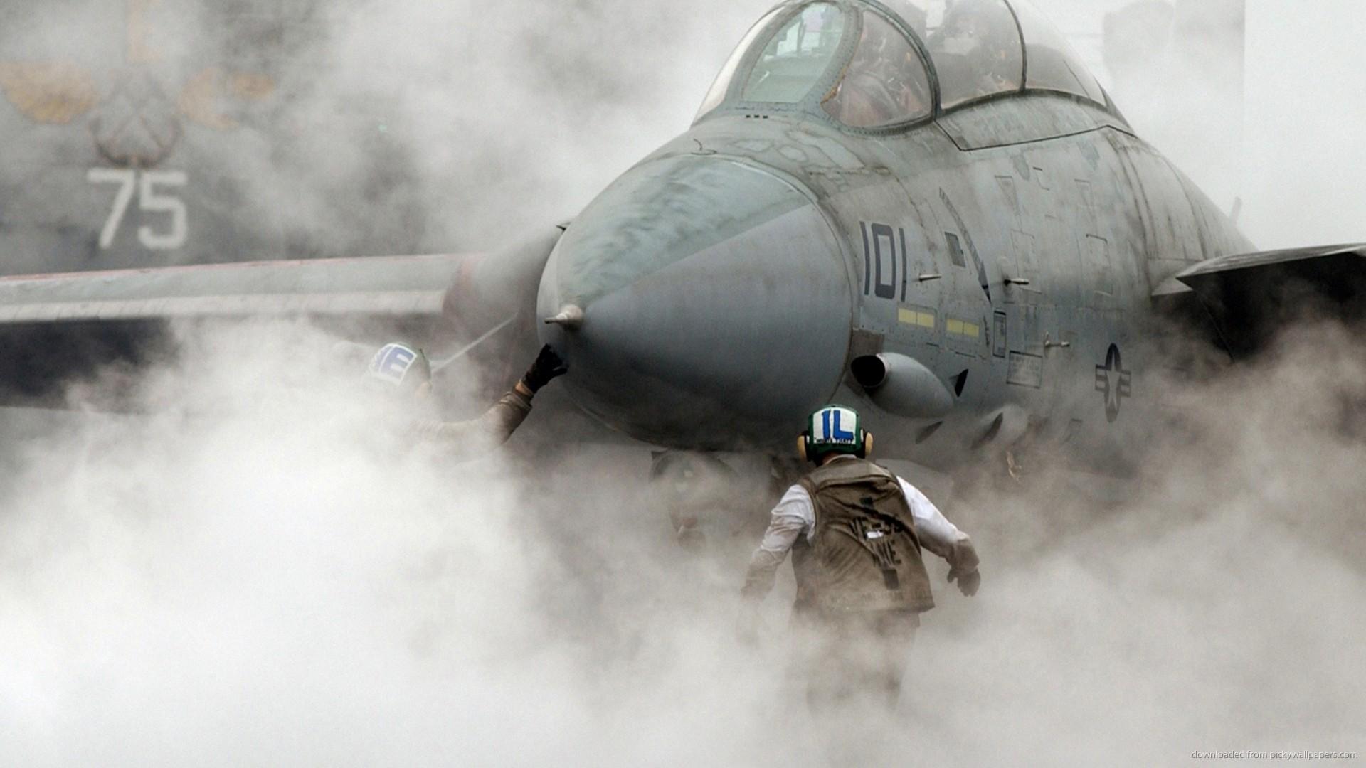 Grumman F-14 Tomcat picture