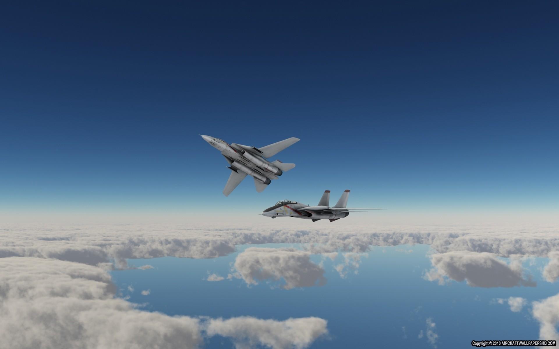 F-14 Tomcat Wallpaper