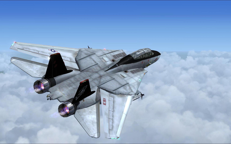 F 14 Tomcat 833850