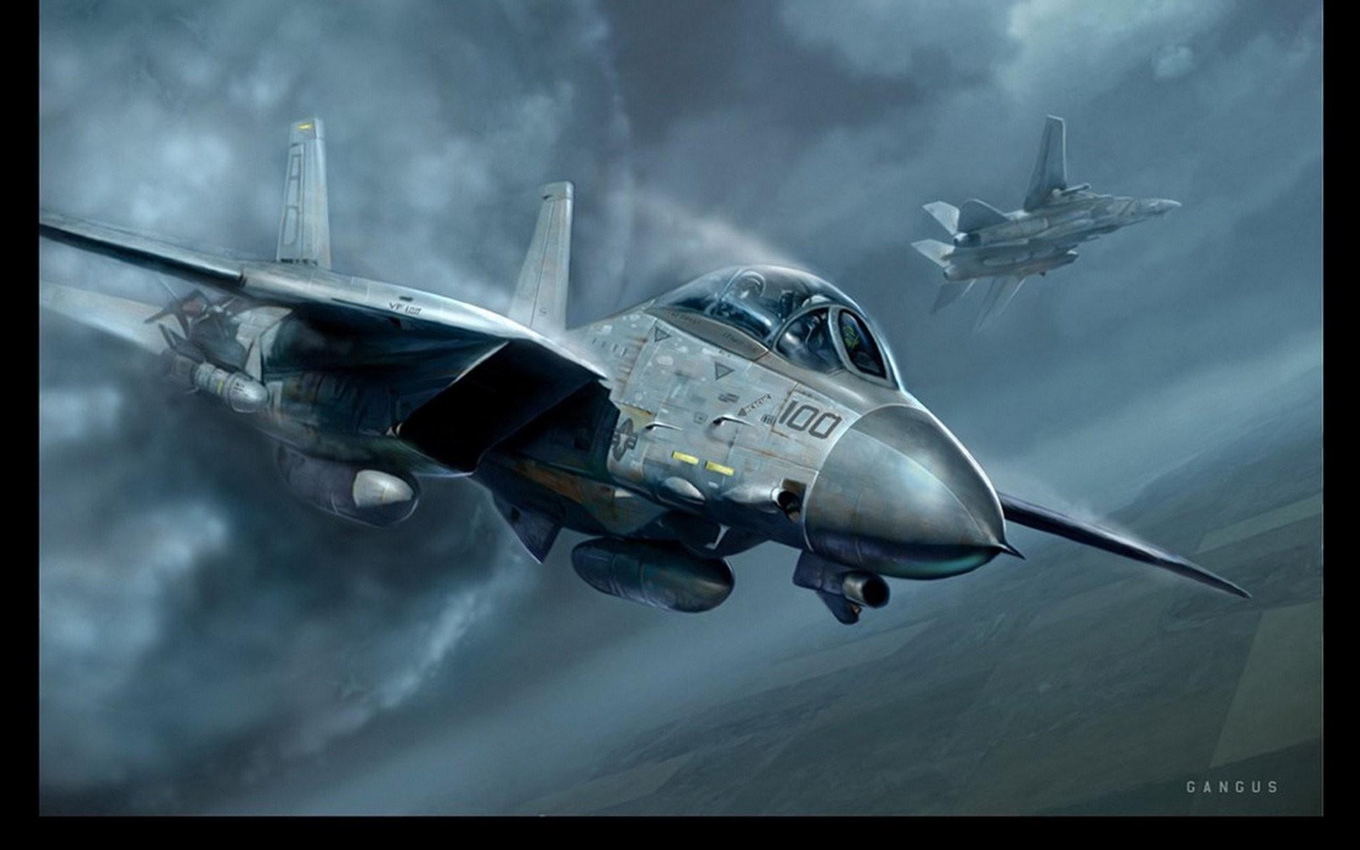 F 14 Tomcat 590877