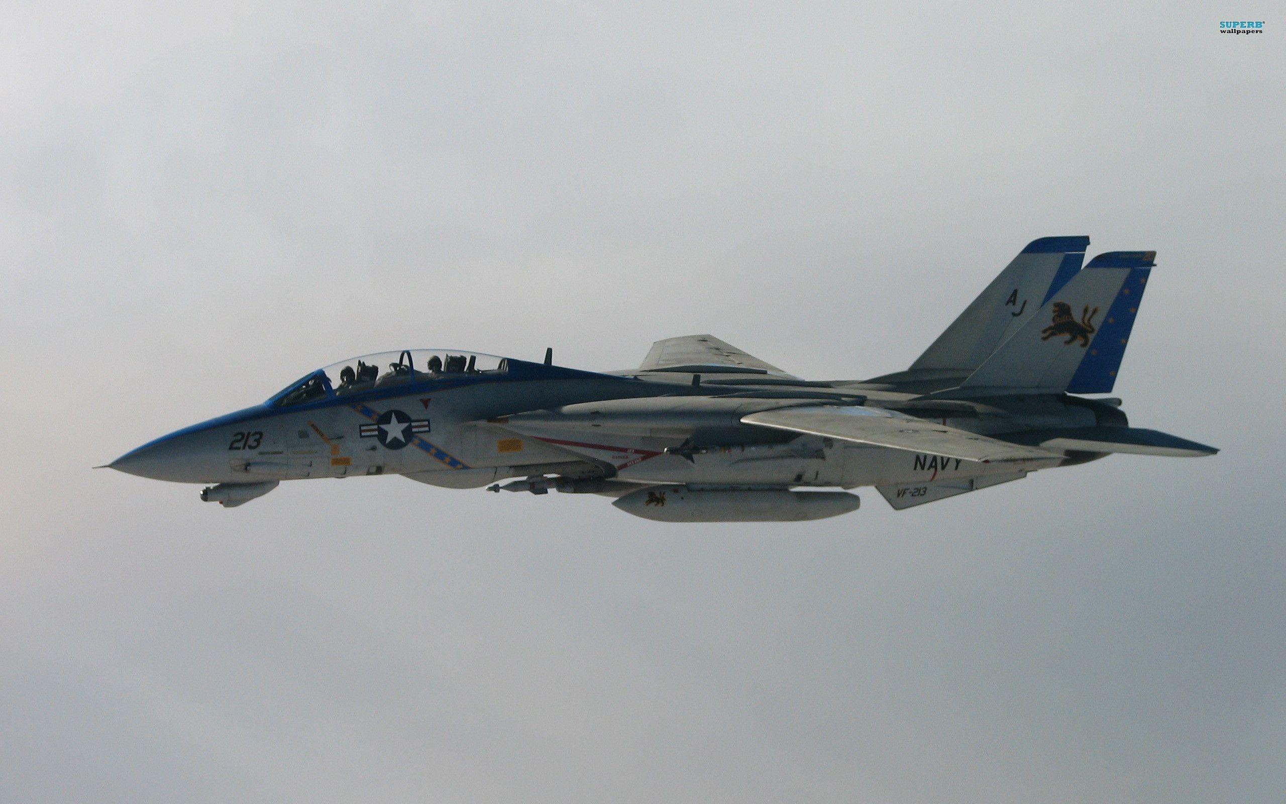 Grumman F-14 Tomcat wallpaper – Aircraft wallpapers – #