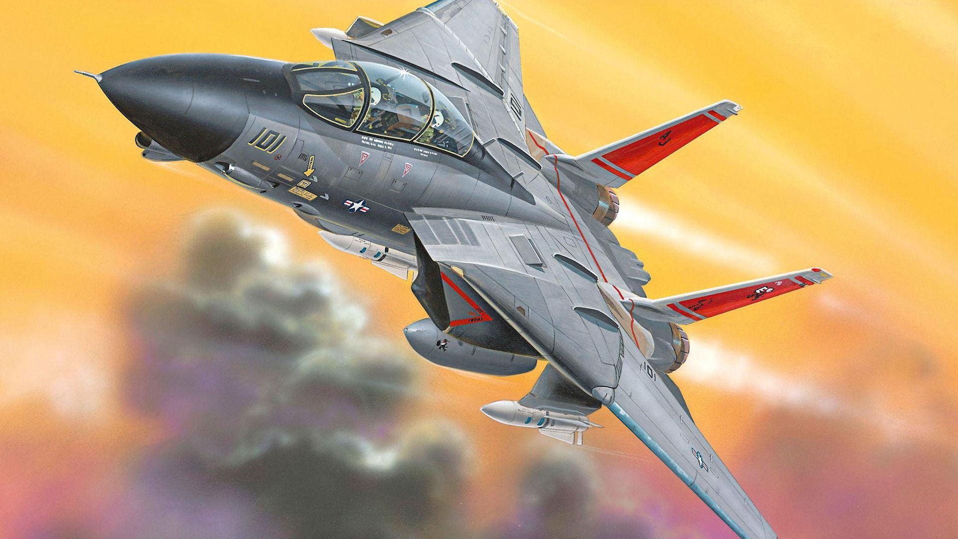 F 14 aviones de combate tomcat armas pilotos militares soldados vuelo sky  air force 4 Tamaños