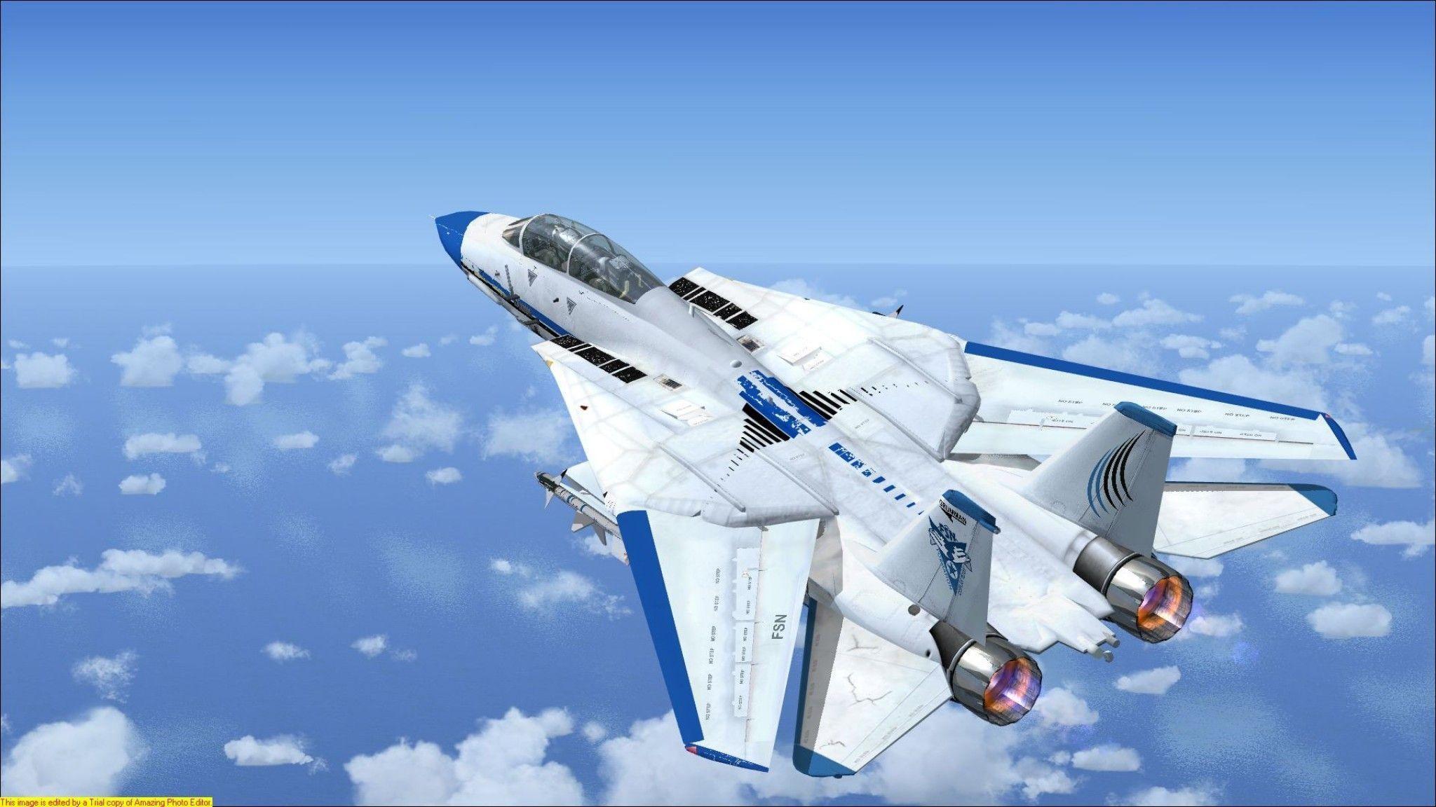 F 14 Tomcat FSX, burn, f-22, f22, military, sky